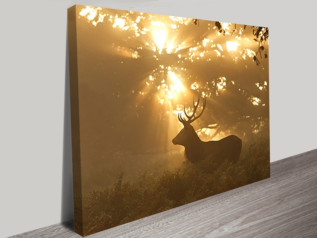 Brisbane Canvas Wall Art Pertaining To Popular Canvas Art Perth, Wall Canvas Picture Printing Australia (View 5 of 15)