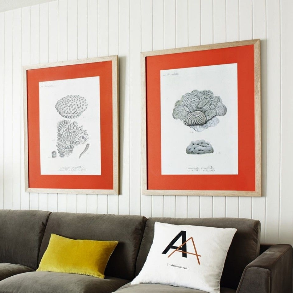 Featured Photo of Framed Coral Art Prints
