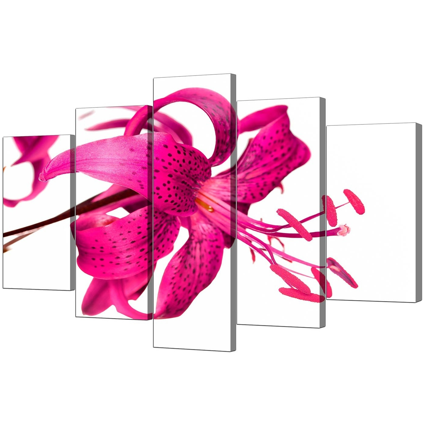 Extra Large Lily Canvas Wall Art Set Of 5 In Pink Pertaining To Most Recently Released Girl Canvas Wall Art (Gallery 10 of 15)