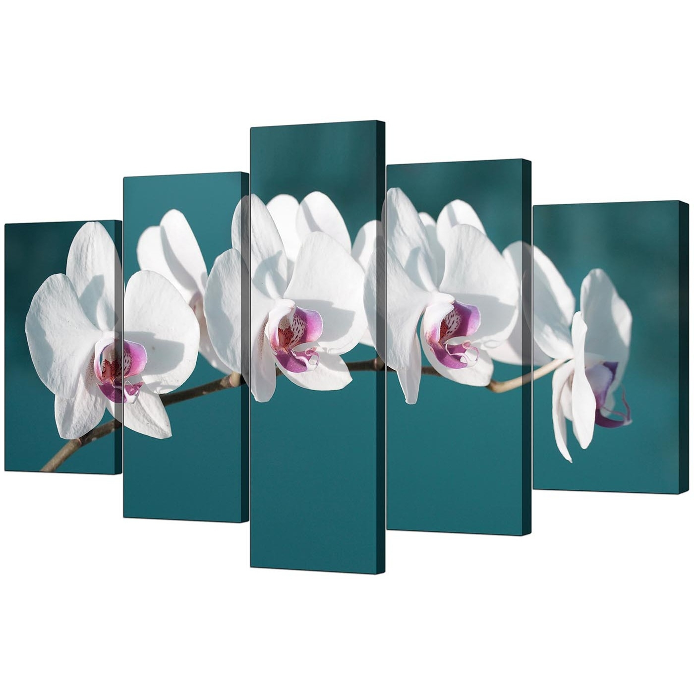 Extra Large Orchids Canvas Prints 5 Panel In Teal Within Widely Used Orchid Canvas Wall Art (View 3 of 15)