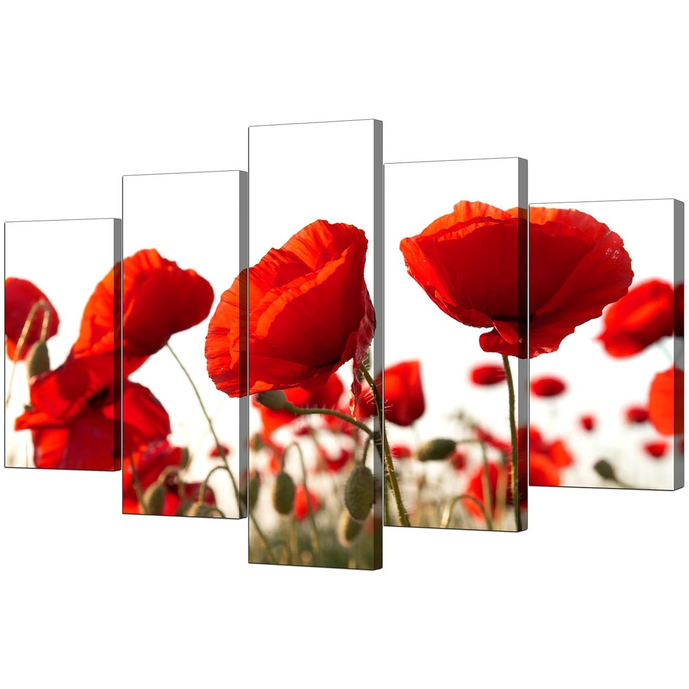 Extra Large Poppies Canvas Prints Uk 5 Part In Red Within Most Recently Released Poppies Canvas Wall Art (Gallery 1 of 15)