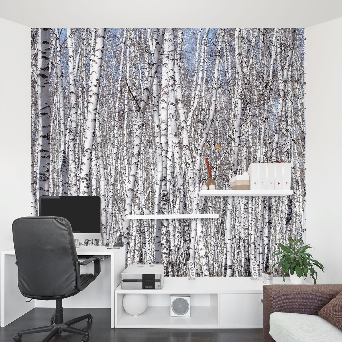 Favorite Murals Wall Accents In Birch Trees Wall Mural (View 5 of 15)