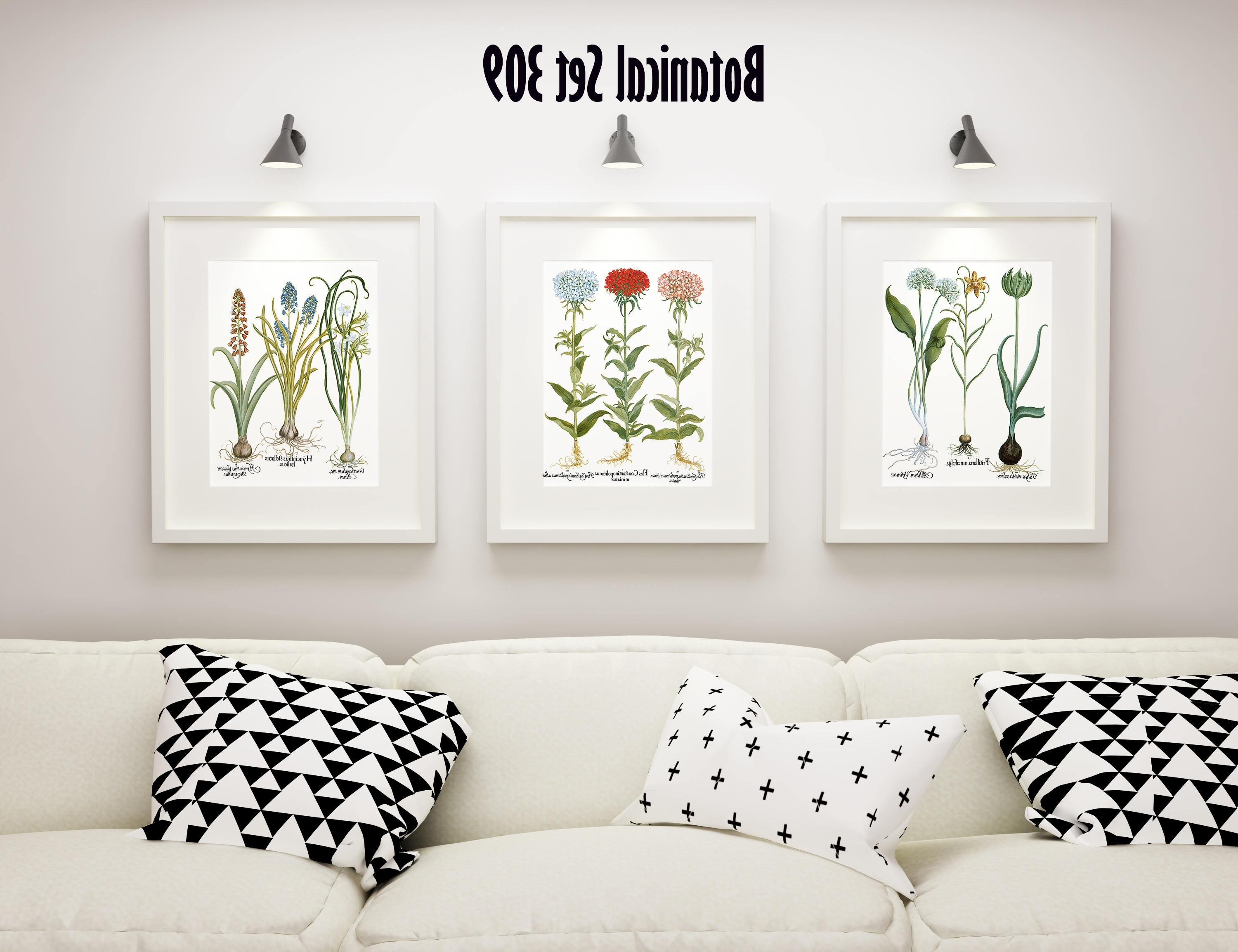 Framed Botanical Art Prints For Favorite Botanical Print Set Of 3, Framed Botanical Art, Vintage Floral (View 3 of 15)