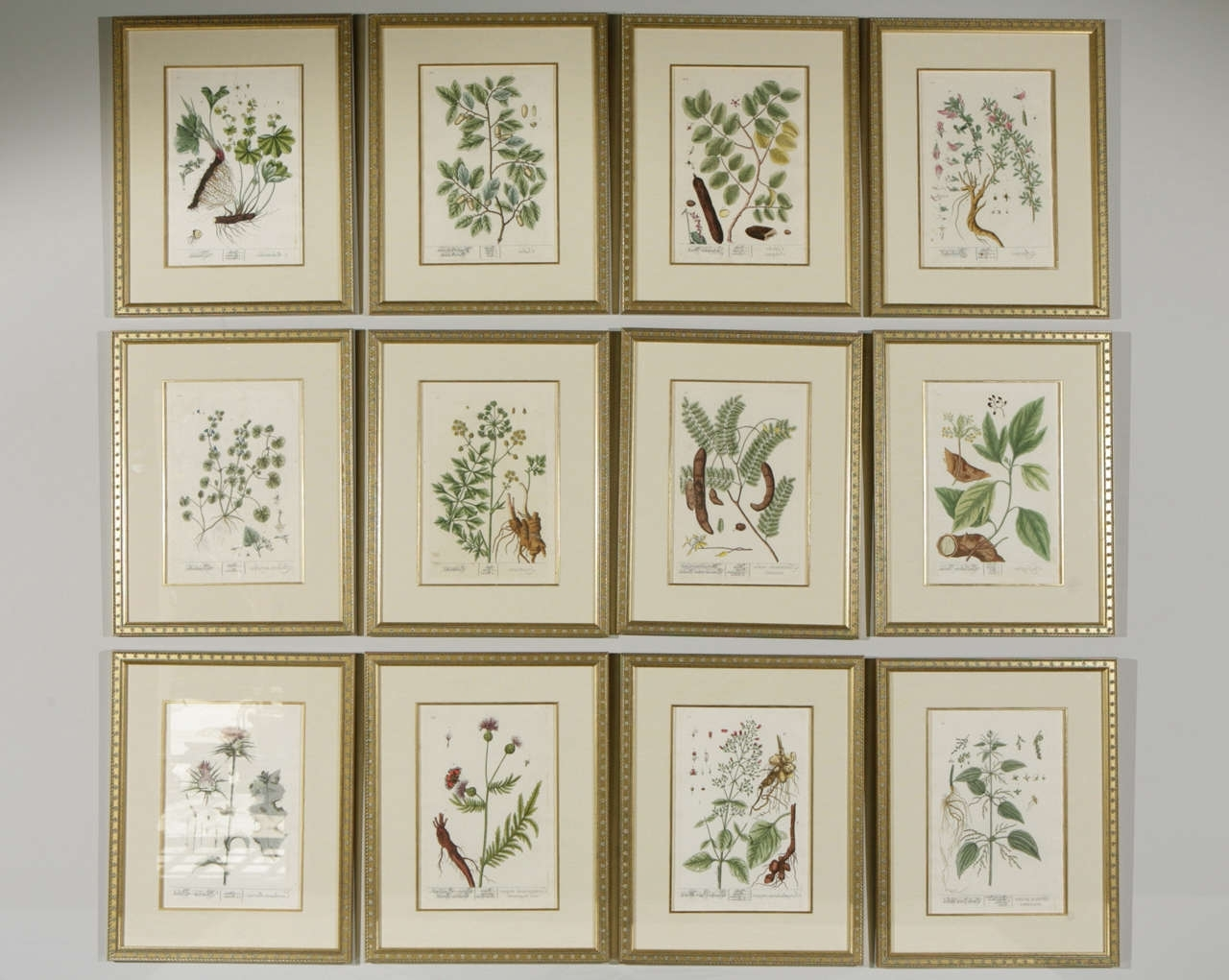 Fresh Framed Botanical Prints (View 2 of 15)