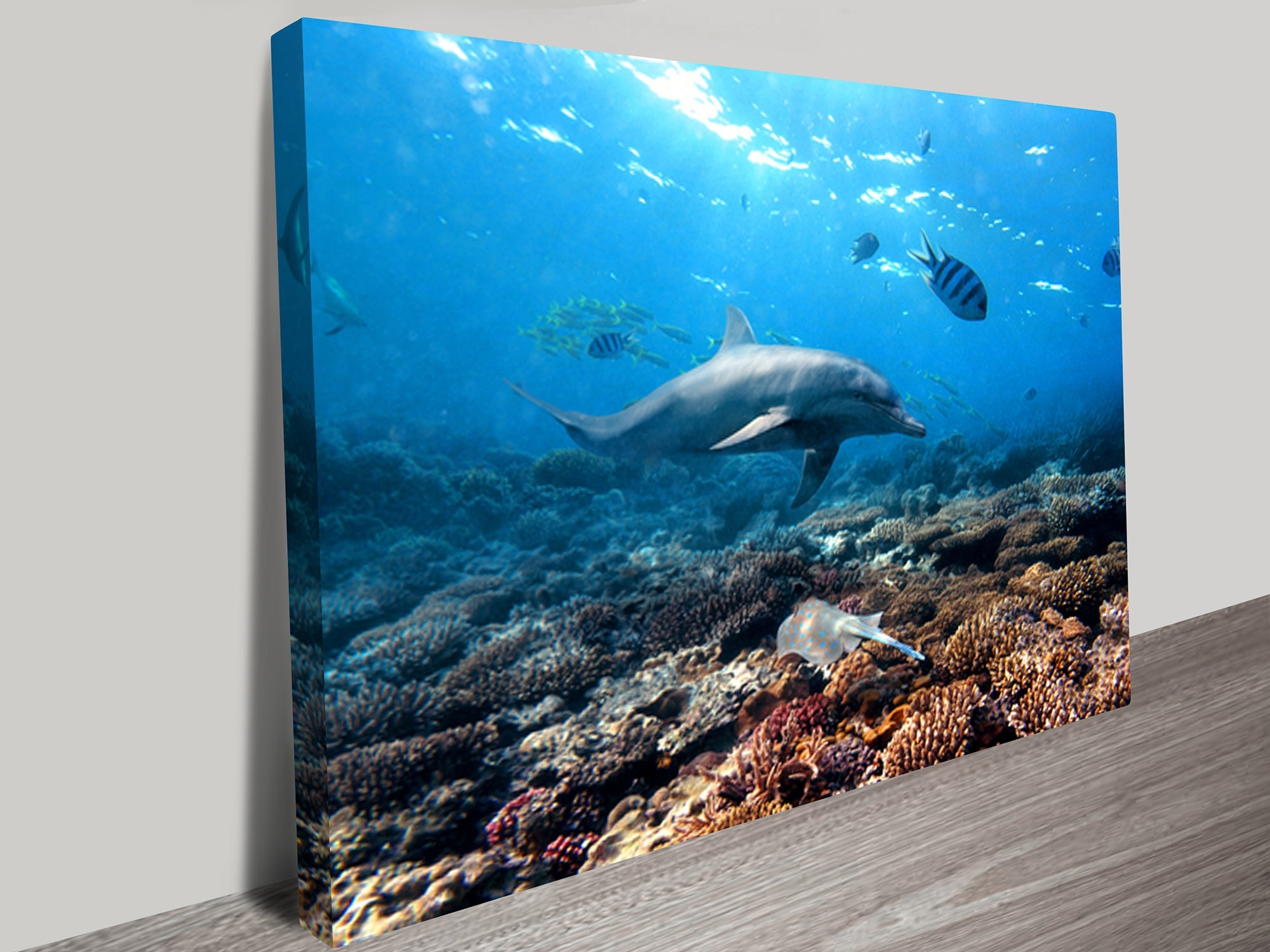 Geelong Canvas Wall Art Pertaining To Fashionable Buy Dolphins Canvas Prints Geelong Melbourne Australia (View 6 of 15)