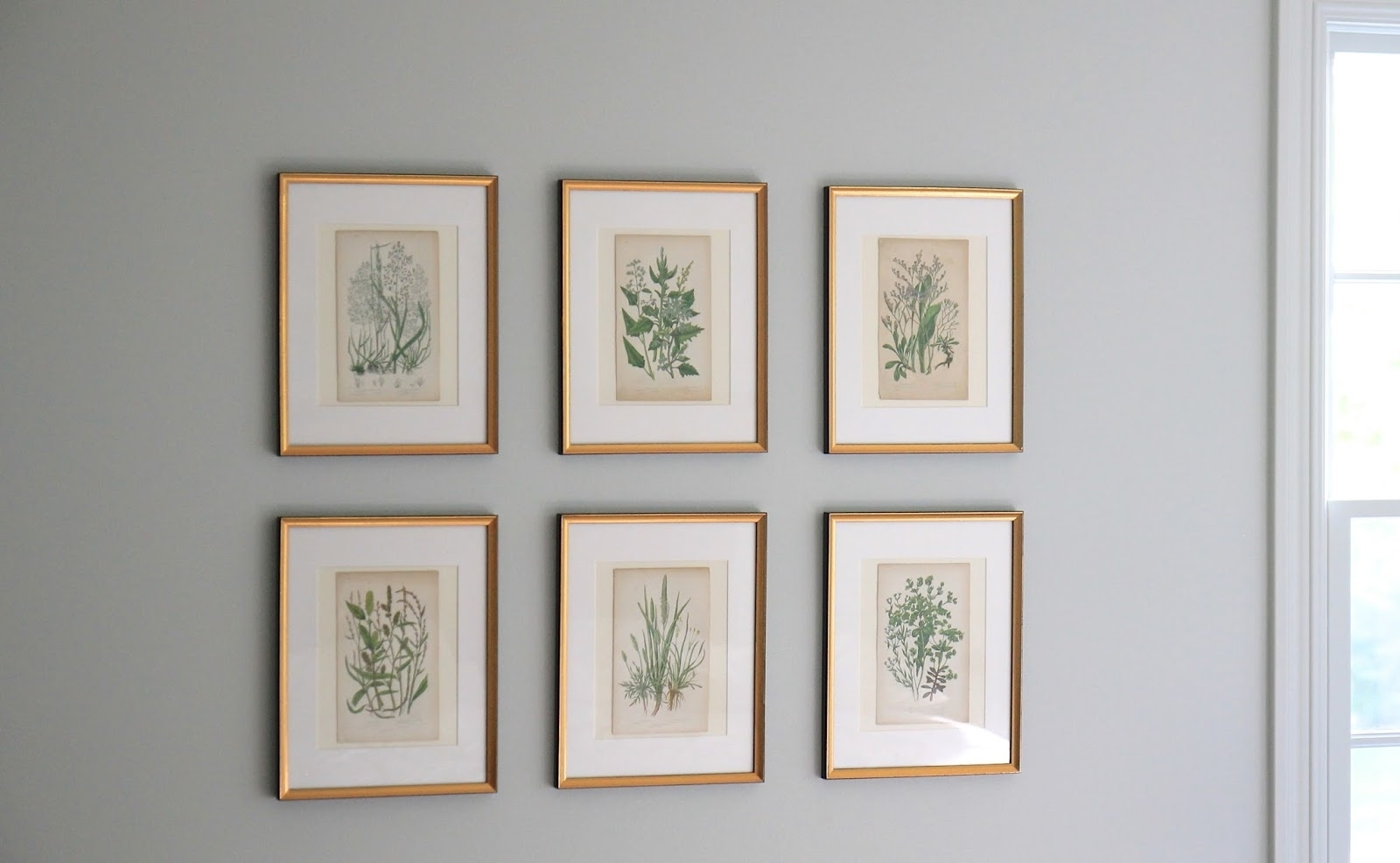 Jenny Steffens Hobick: Framing Botanicals, Antique Mirror Find Throughout Well Liked Antique Framed Art Prints (Gallery 6 of 15)