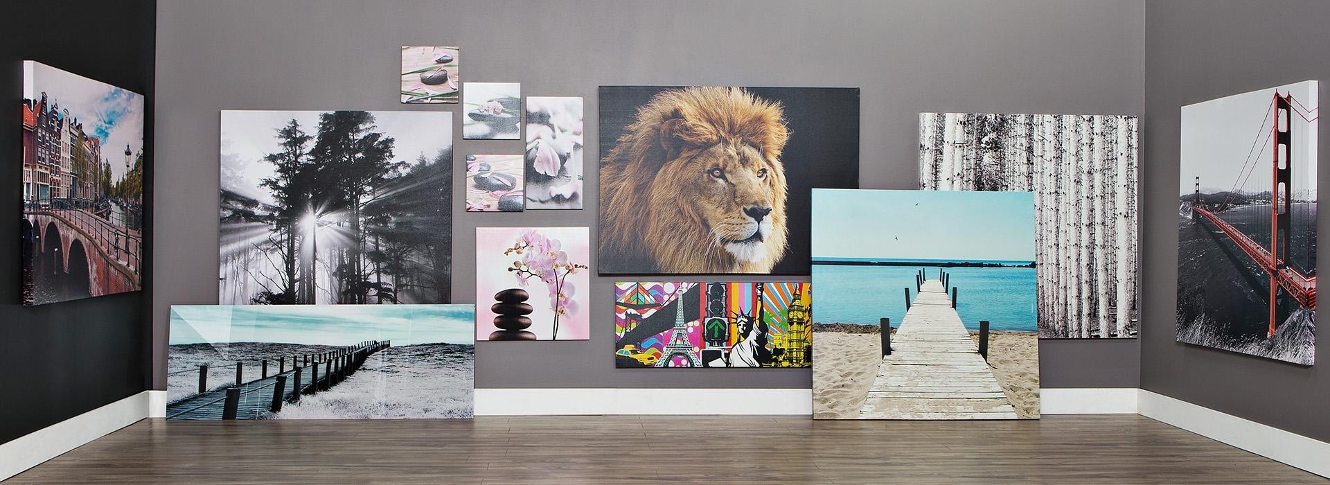 Jysk Canada (Gallery 1 of 15)