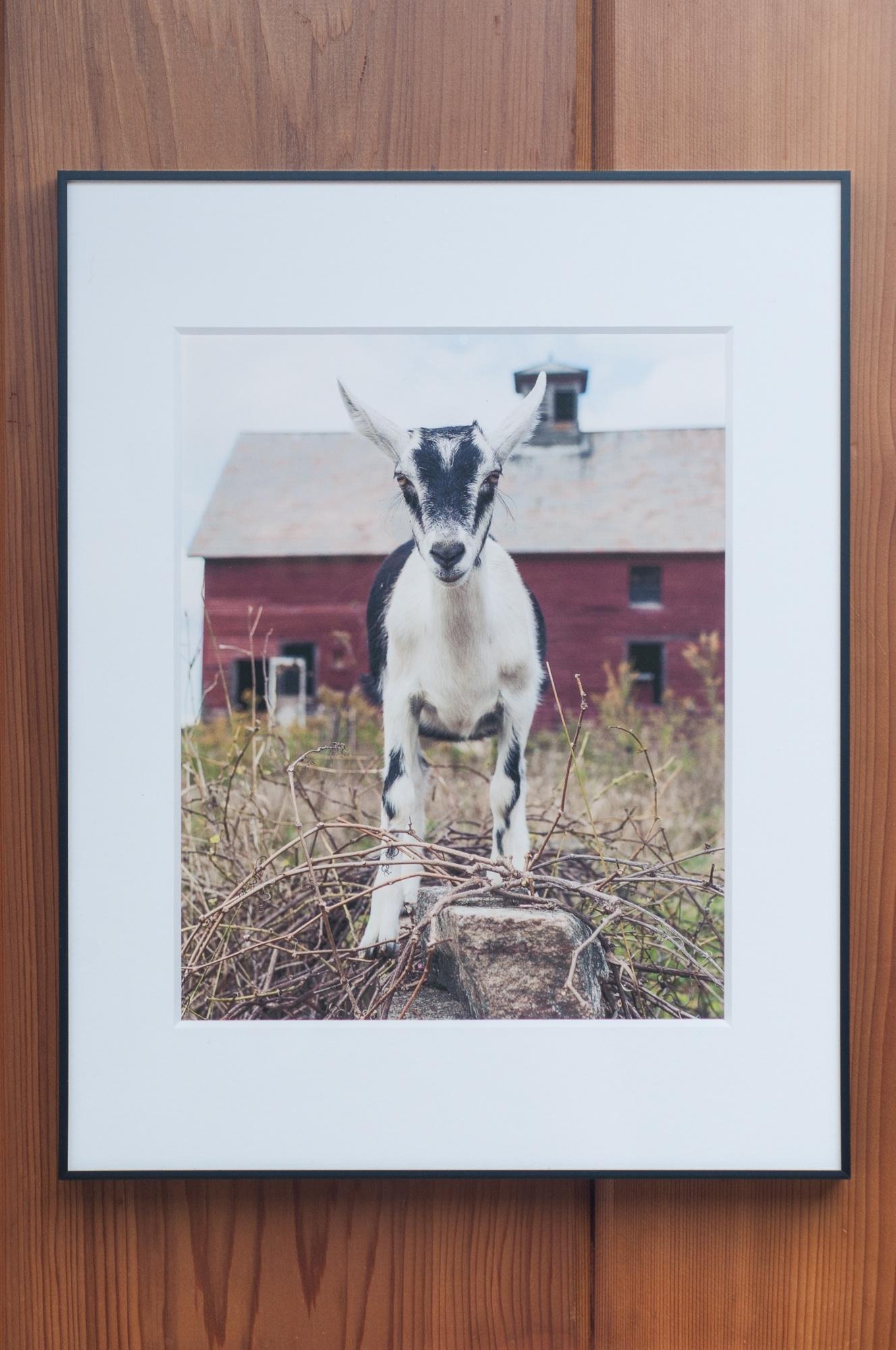 Latest 8X10 Fine Art Farm Prints Framed, 11X14 Black Archival Frame Throughout Framed Fine Art Prints (View 10 of 15)