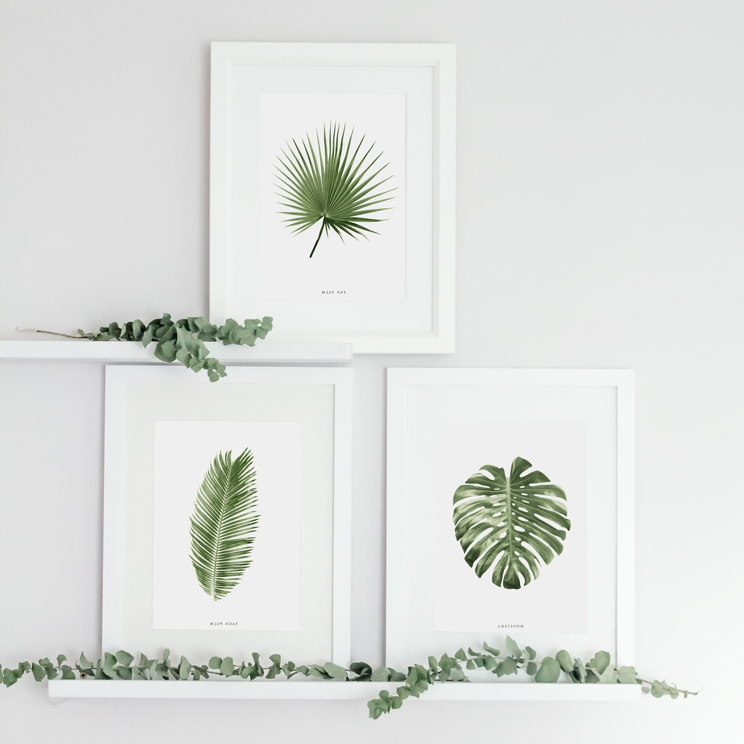Latest Set Of 3 Tropical Leaf Prints (View 6 of 15)