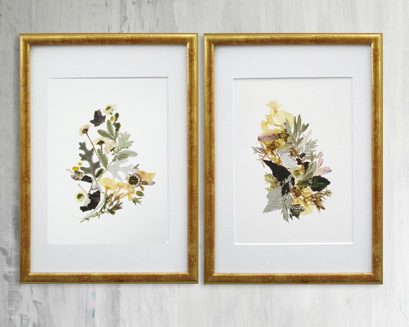 Most Current Flowers Framed Art Prints In Set Of 2 Framed Botanical Prints Plant Art Contemporary Art Dry (View 2 of 15)