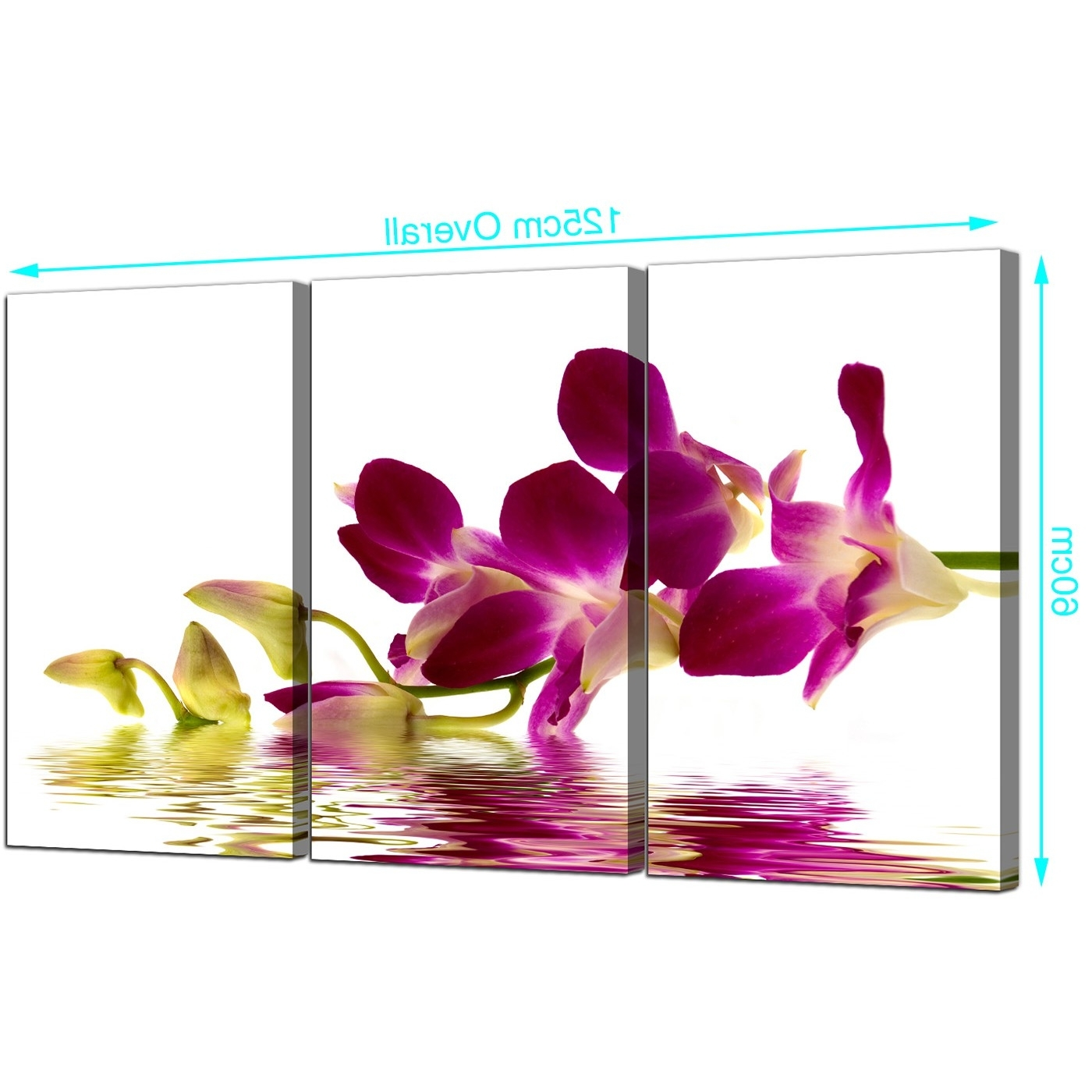 Most Current Orchid Canvas Wall Art In Orchids Canvas Wall Art Set Of 3 For Your Living Room (View 1 of 15)