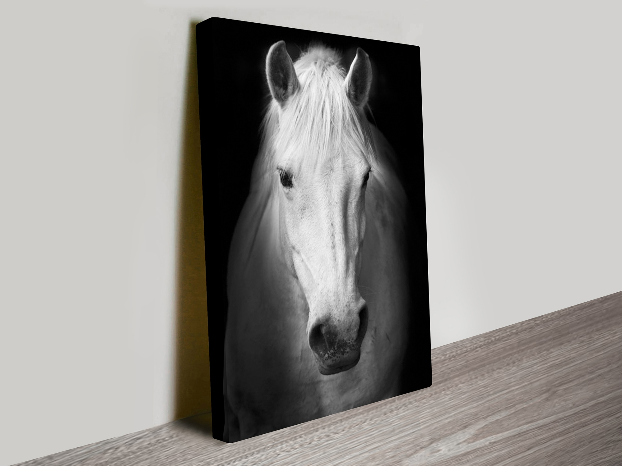 Most Popular Horse Black And White Photography Canvas Art Print Inside Black And White Photography Canvas Wall Art (View 10 of 15)