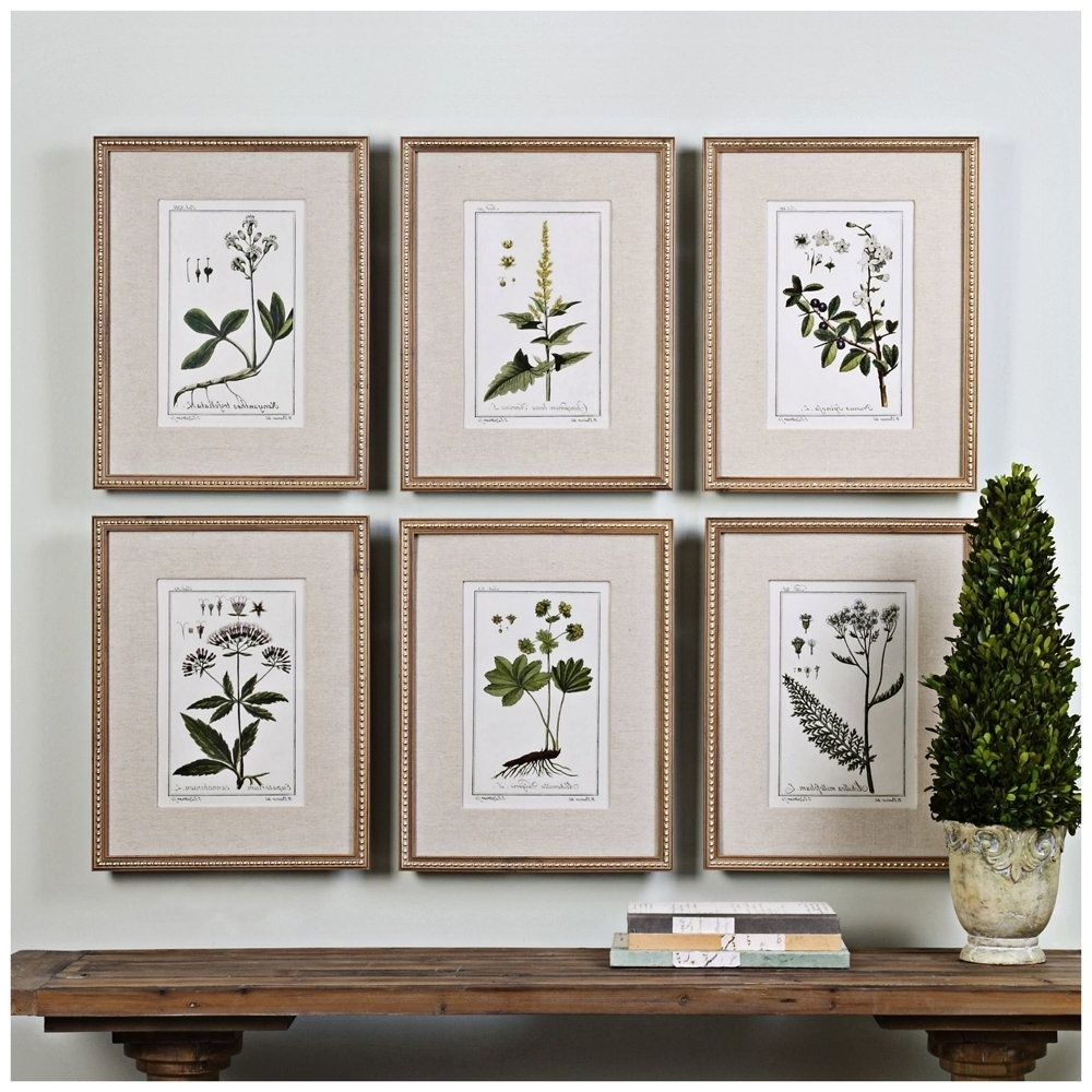 Most Recently Released Amazon: 6 Pc Green Floral Botanical Study Prints Wall Art Set Regarding Framed Botanical Art Prints (View 9 of 15)