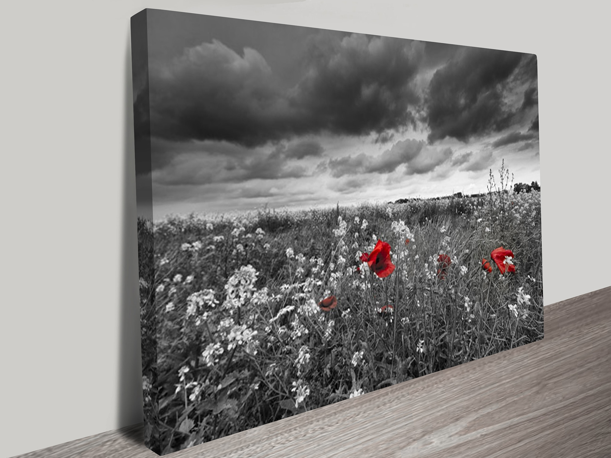 Most Up To Date Canvas Wall Art Of Perth With Regard To Red Poppy Field Black And White Canvas Art (View 10 of 15)
