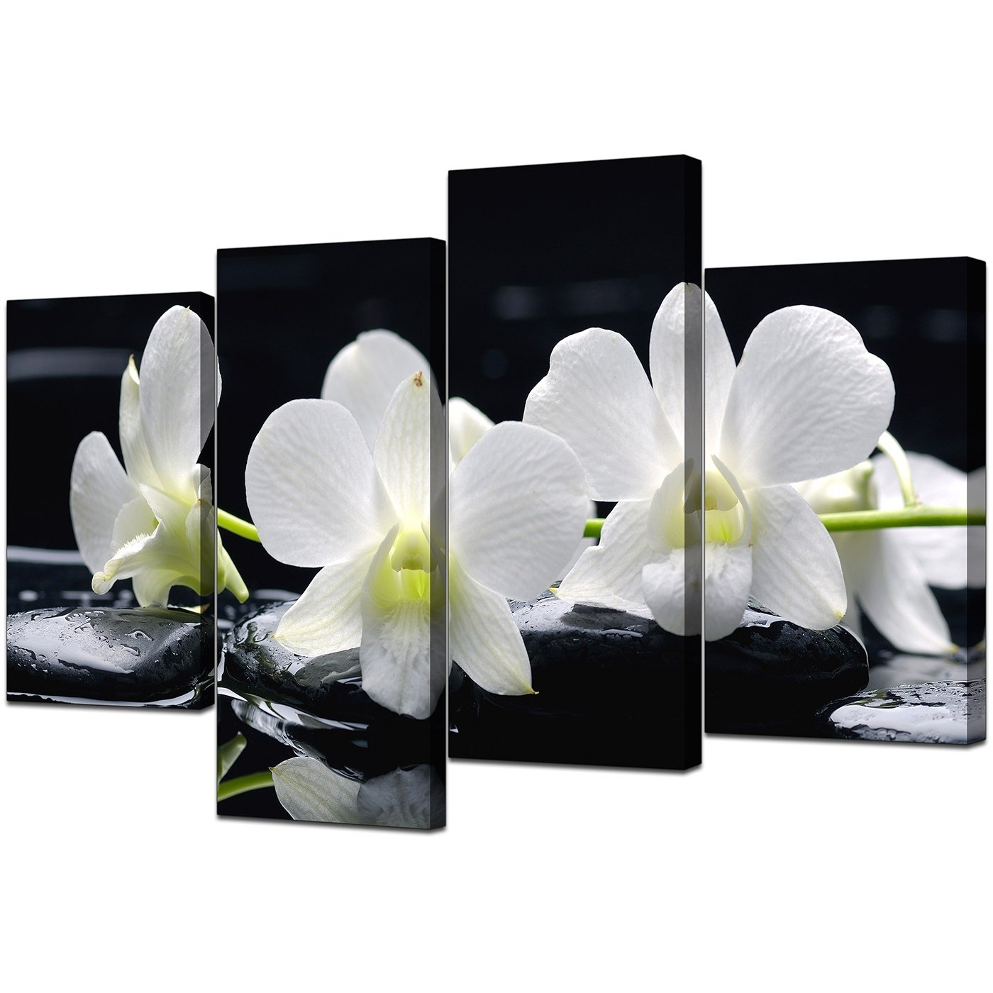 Orchid Canvas Wall Art In Well Known Canvas Wall Art Of Orchids In Black & White For Your Living Room (Gallery 11 of 15)