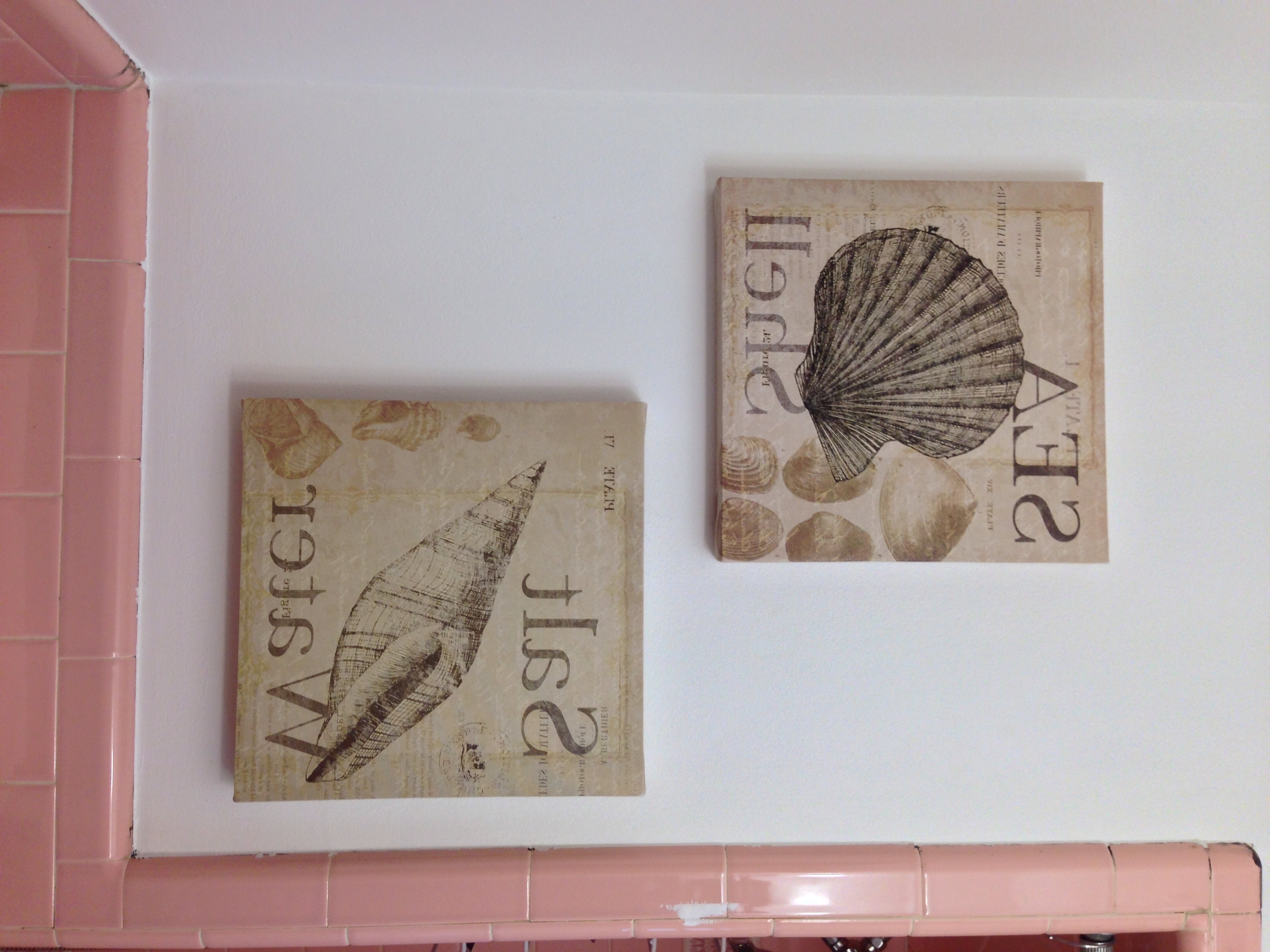 Popular Jacana Canvas Wall Art Throughout Seashell Canvas Wall Art From Burlington Coat Factory – $ (View 12 of 15)