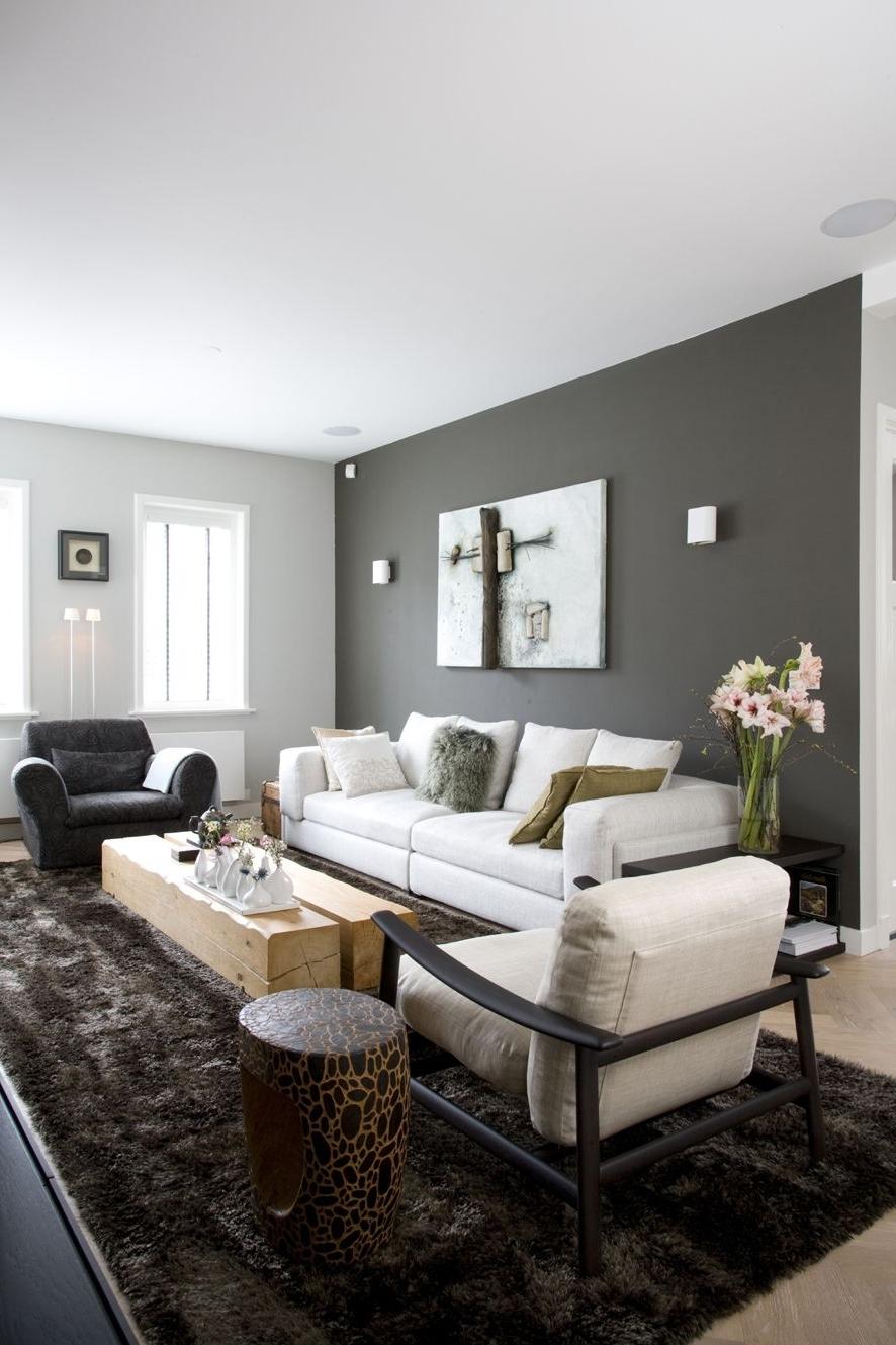 Popular Peinture Salon Grise – 29 Idées Pour Une Atmosphère Élégante With Regard To Gray Wall Accents (Gallery 1 of 15)