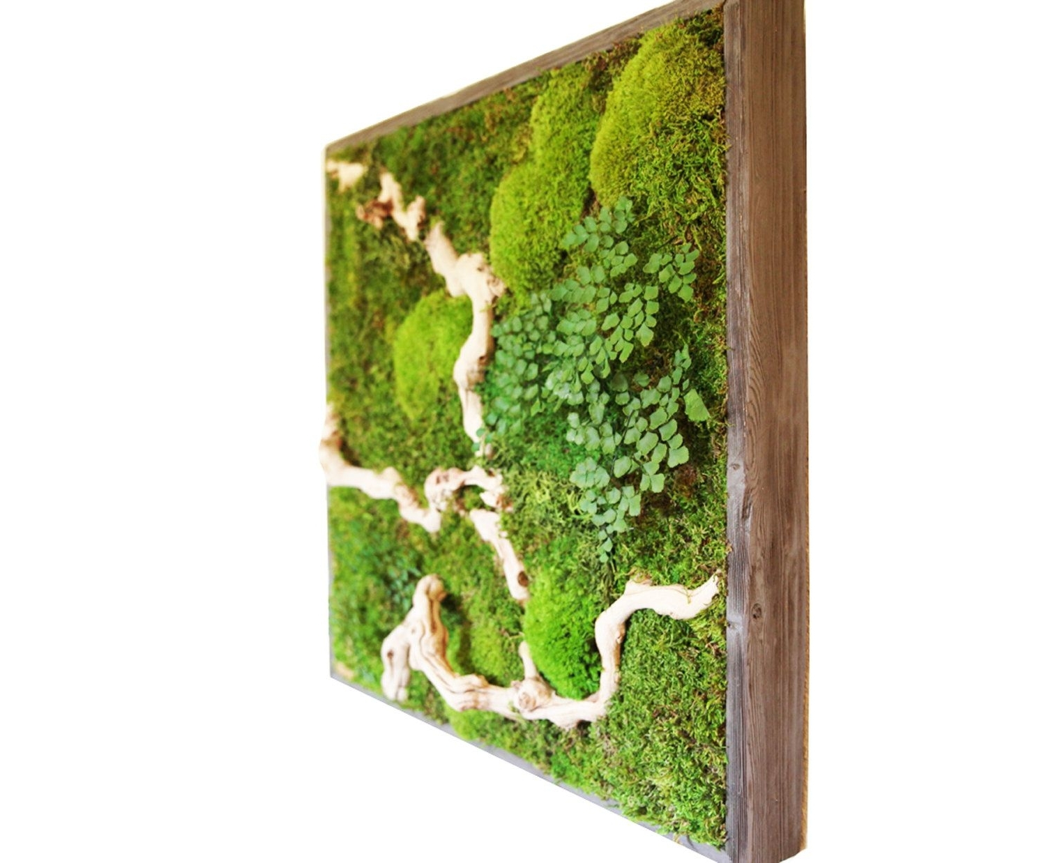 Preferred Green Wall Accents Pertaining To 15 Spectacular Moss Wall Art Designs That Redefine The Living Wall (Gallery 5 of 15)