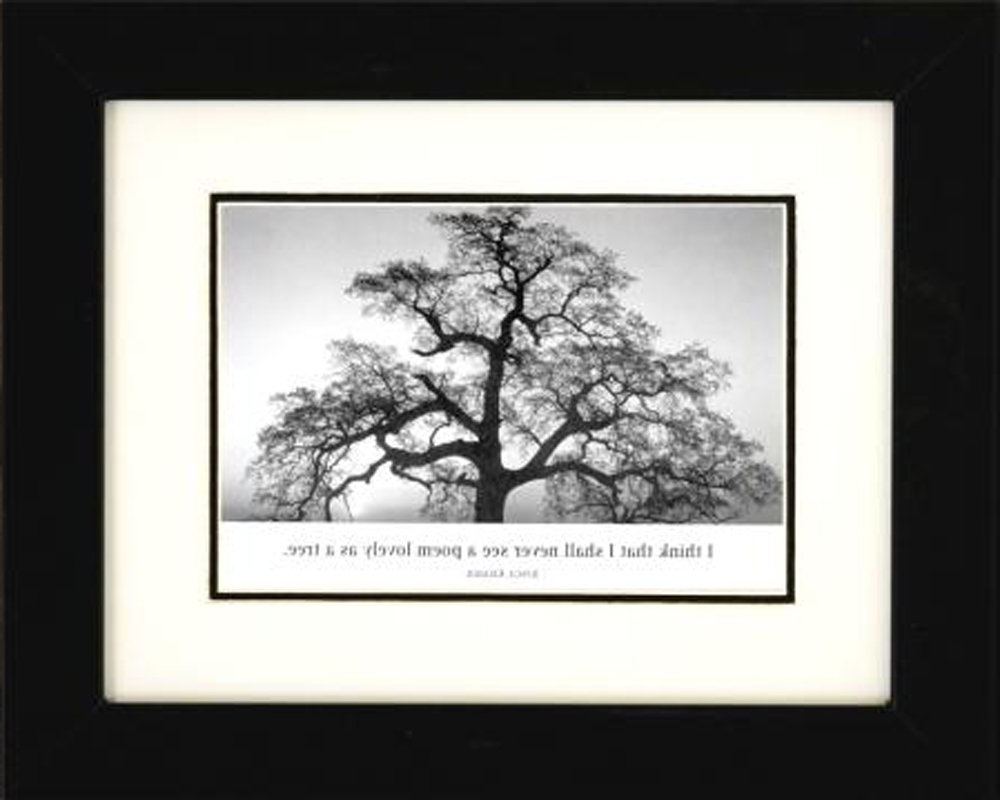 Professionally Framed Oak Tree At Sunsetansel Adams Black For Well Liked Famous Art Framed Prints (View 12 of 15)