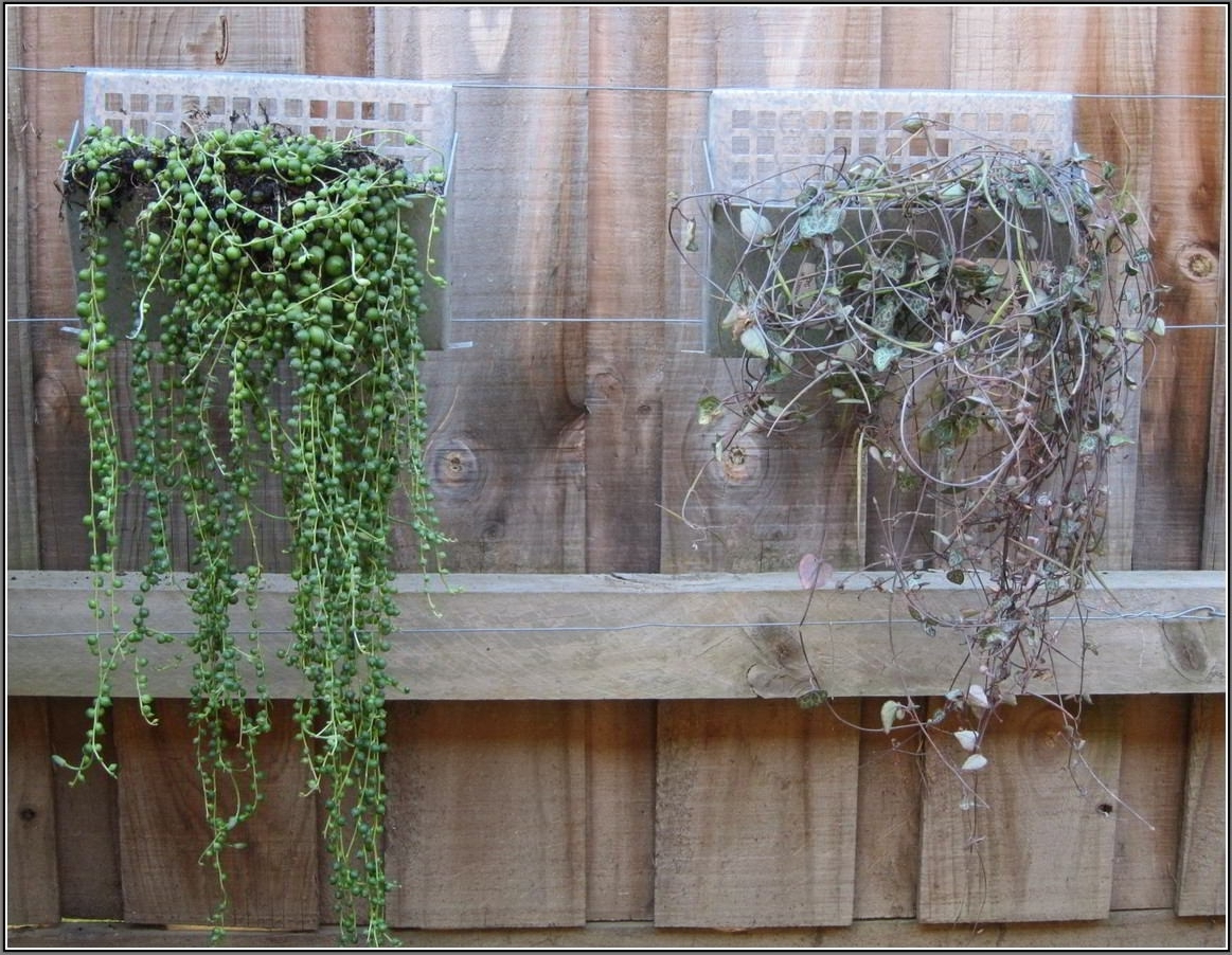 Recent Garden Wall Accents Pertaining To Outdoor : Aluminum Patio Walls Patio Wall Design Ideas Outdoor (View 15 of 15)