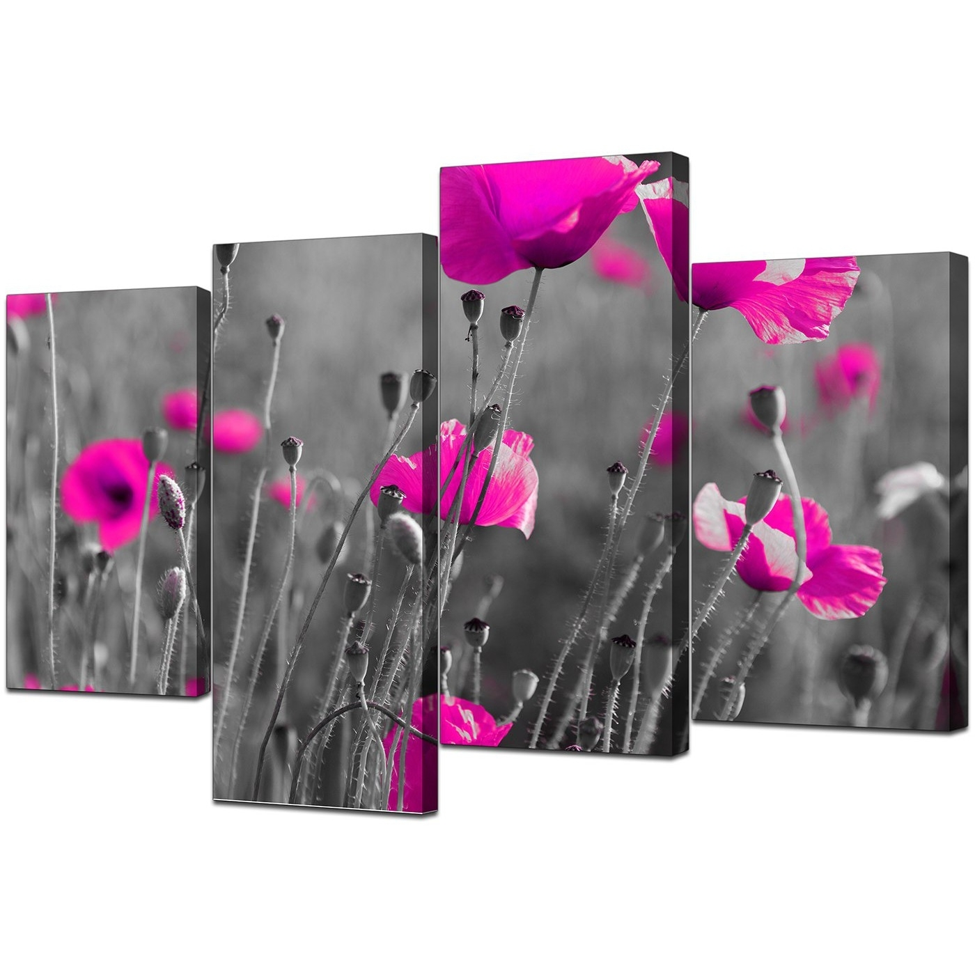 Trendy Canvas Art Of Pink Poppies In Black & White For Your Girls Bedroom Within Pink Canvas Wall Art (View 13 of 15)