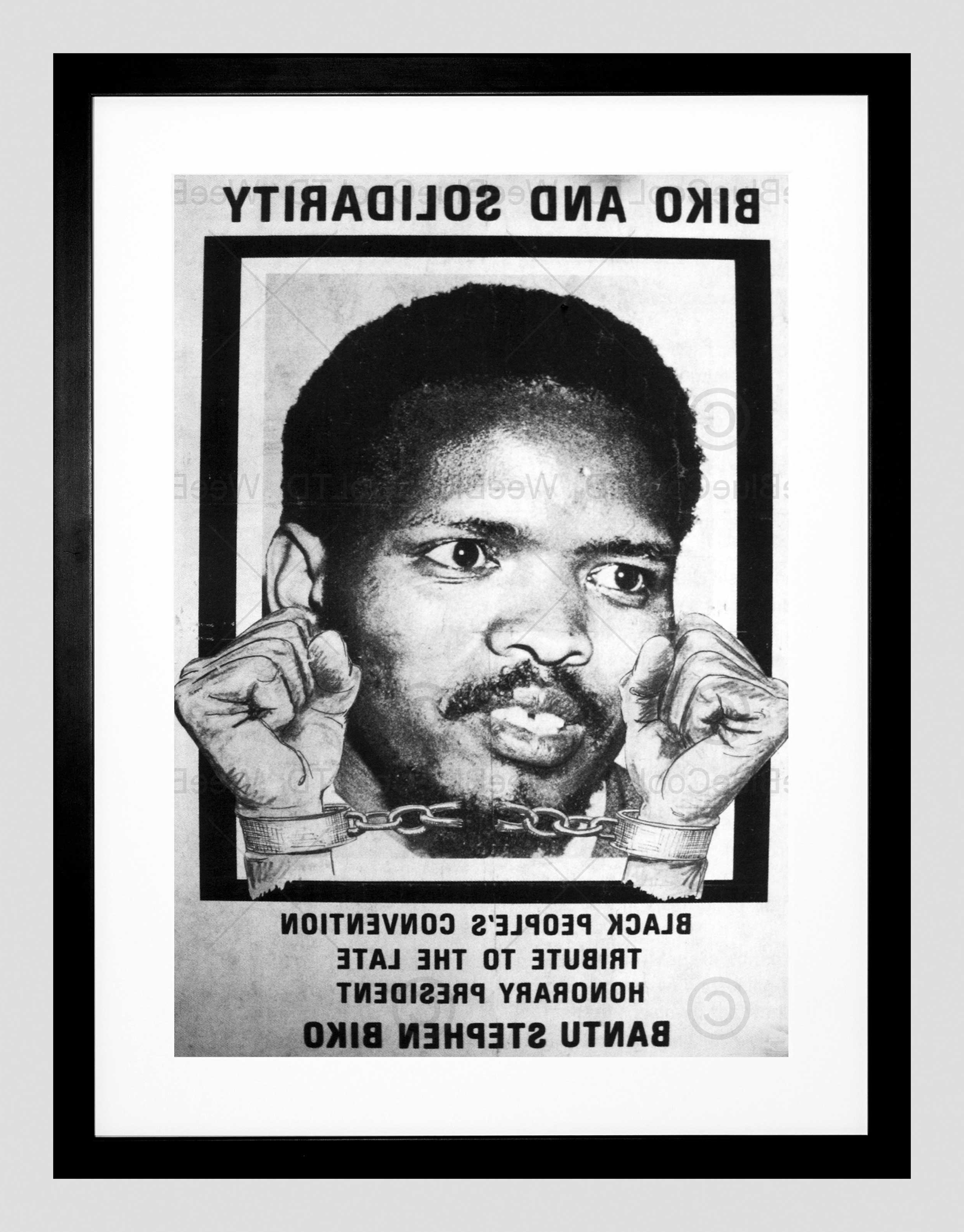 Trendy Political Steve Biko Anc Apartheid South Africa Framed Art Print Pertaining To South Africa Framed Art Prints (View 4 of 15)