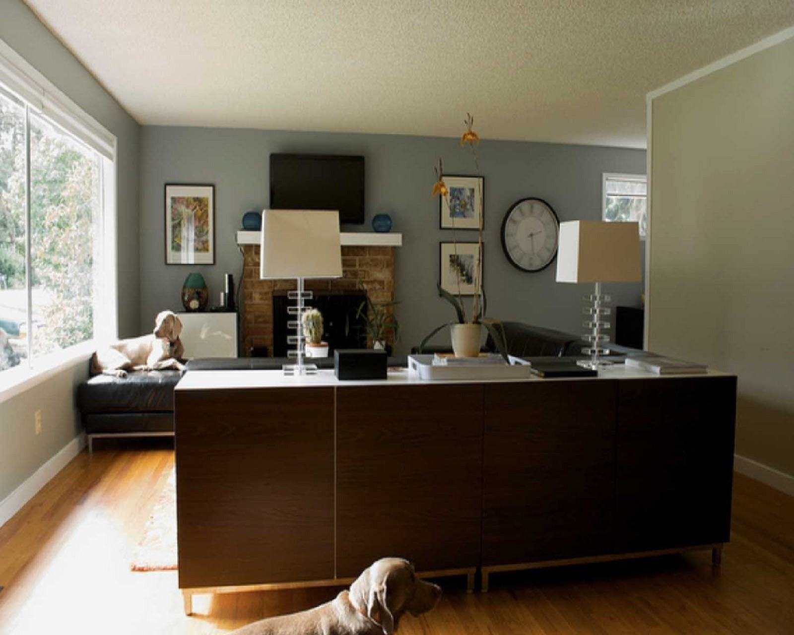 Well Known Blue Paint On The Wall Accent Wall Ideas For Living Room Dark Grey Inside Gray Wall Accents (View 14 of 15)
