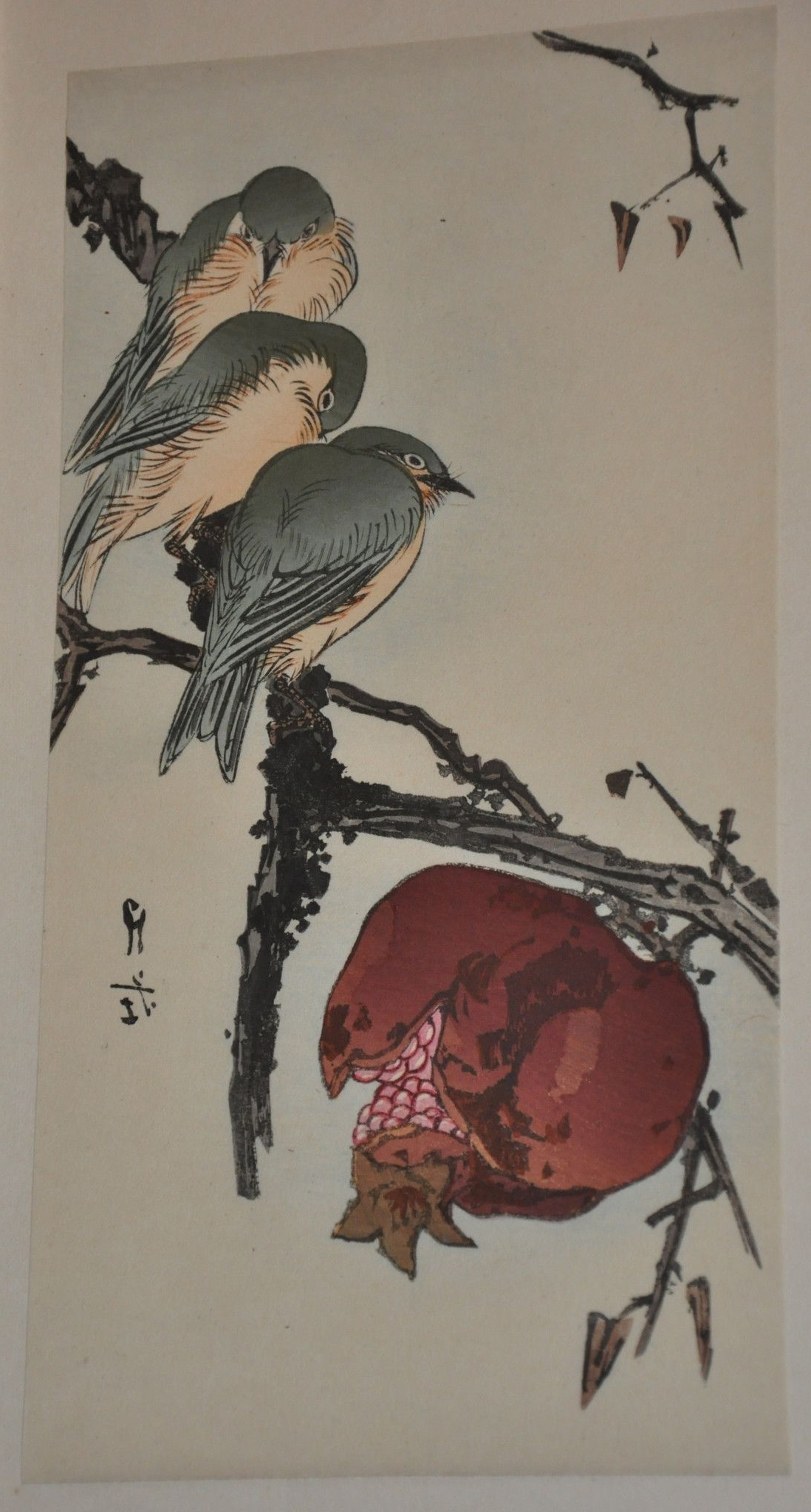 Well Known Framed Asian Art Prints Throughout Original Woodblock Printgesso Yoshimoto Of Pomegranate And (View 5 of 15)