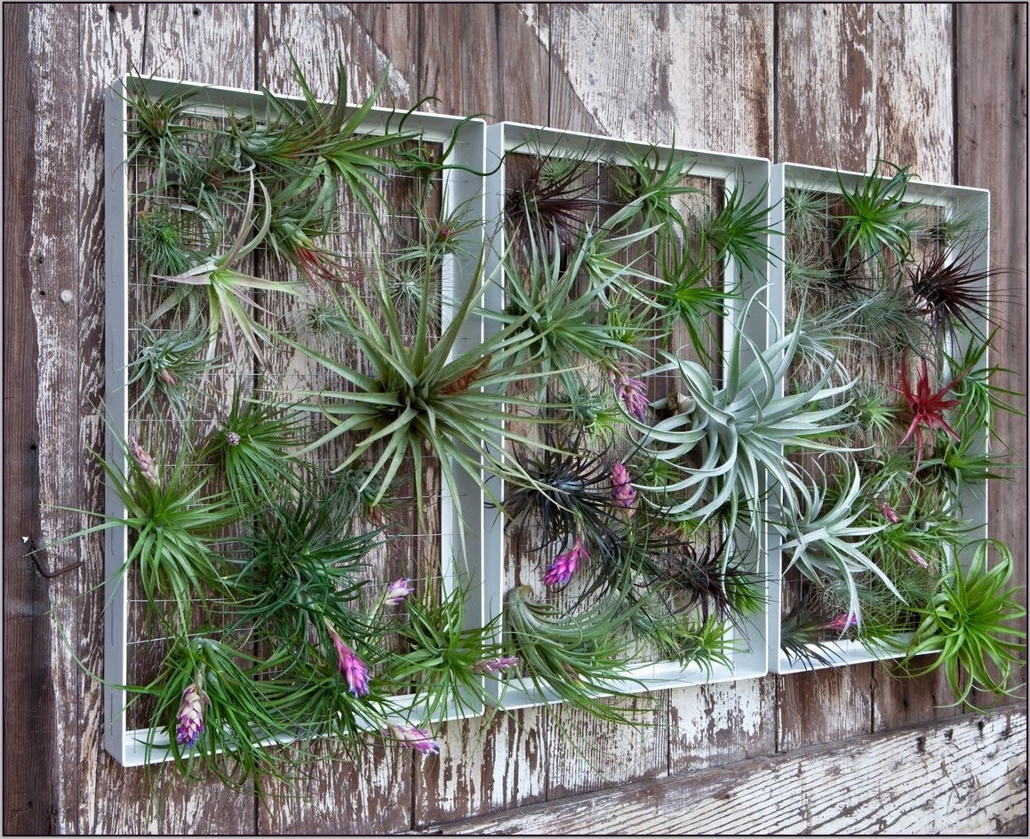 Well Known Garden Wall Accents In Garden Wall Decorations – Gardening Design (View 3 of 15)