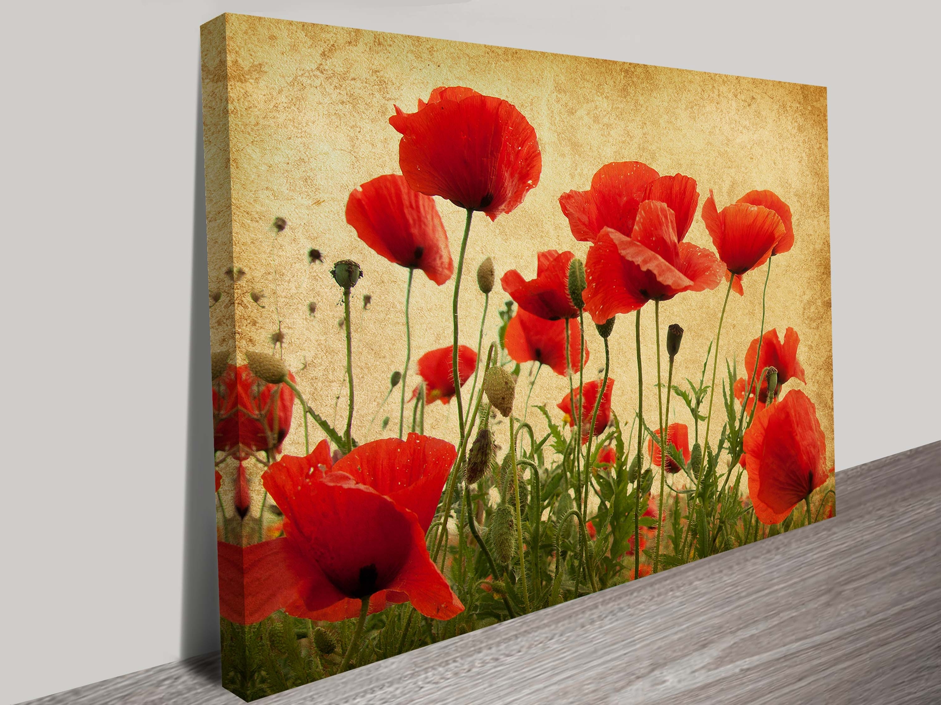 Well Known Wonderful Wall Art Poppies Images – The Wall Art Decorations Inside Red Flowers Canvas Wall Art (View 14 of 15)