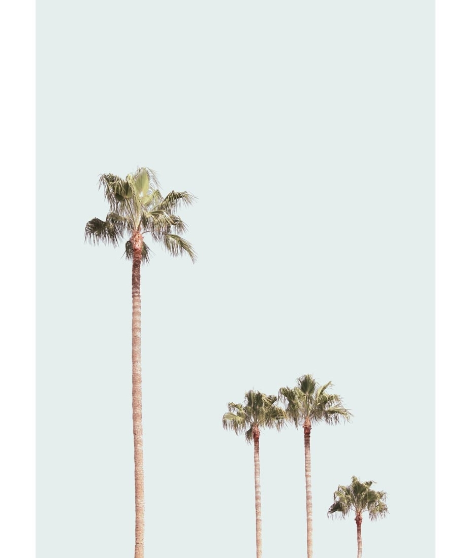 2017 Palm Tree Meta Contemporary Art Palm Tree Wall Art – Prix Dalle Within Palm Tree Wall Art (View 1 of 20)