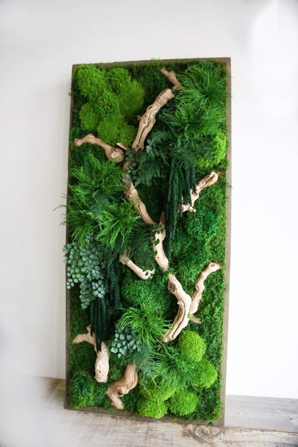 "2018 40"" X 18"" Artisan Moss® Real Preserved Plants In Reclaimed Wood In Moss Wall Art (View 19 of 20)"