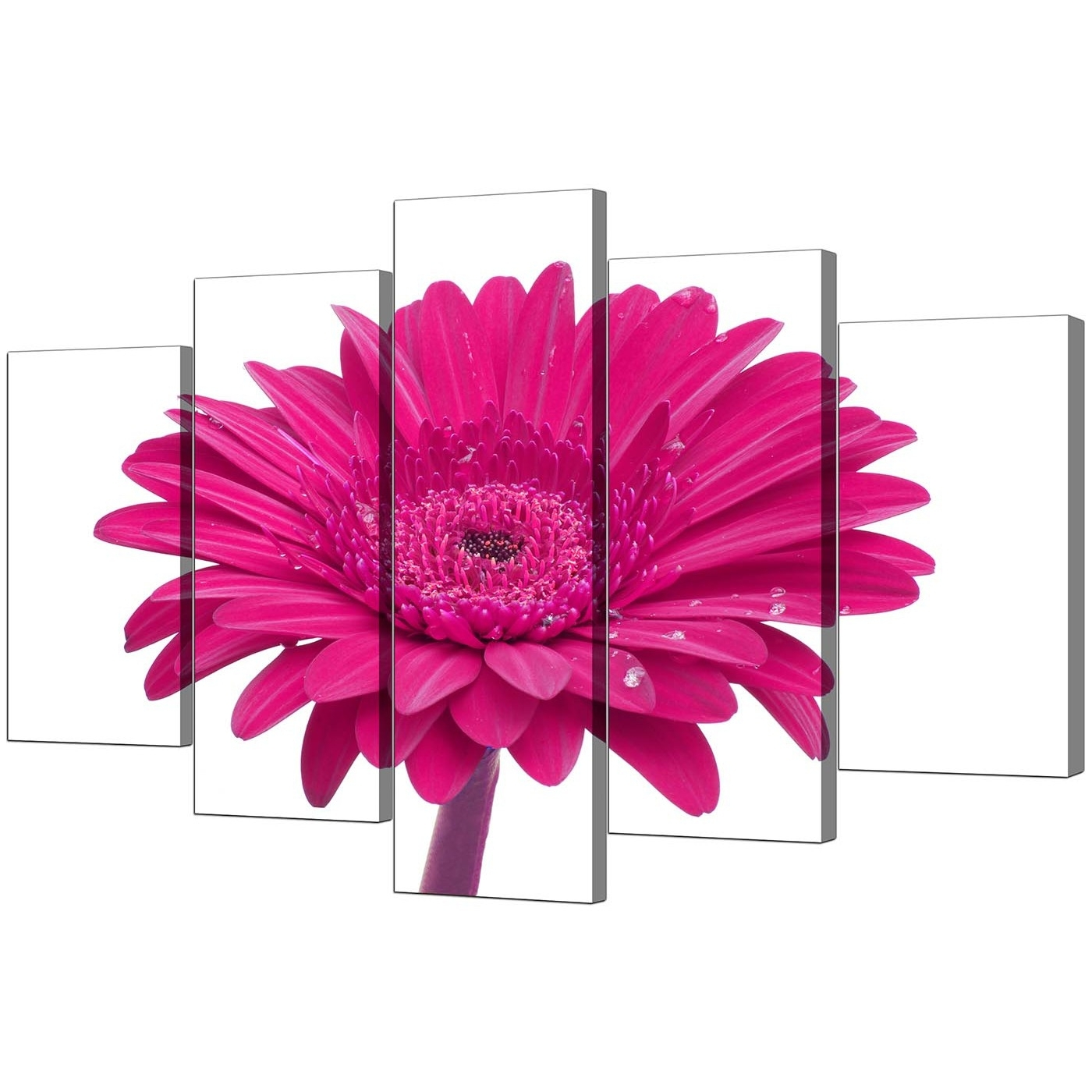 Best And Newest Pink Wall Art Pertaining To Extra Large Flower Canvas Wall Art 5 Piece In Pink (View 3 of 20)