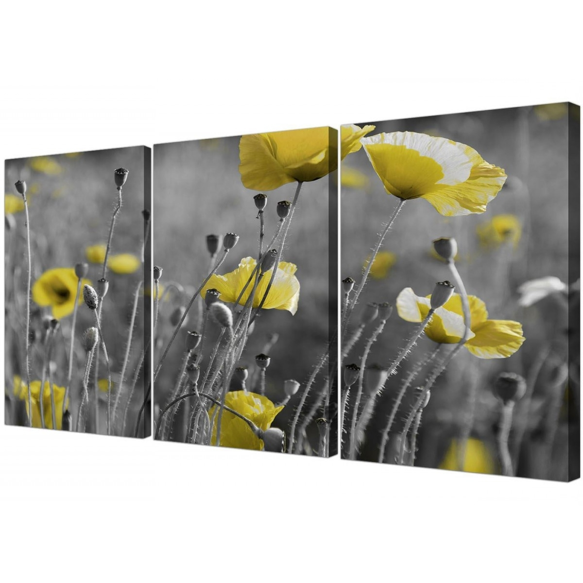 Black And White Canvas With Grey And Yellow Poppies Wall Art Prints Throughout Trendy Yellow Wall Art (View 2 of 20)