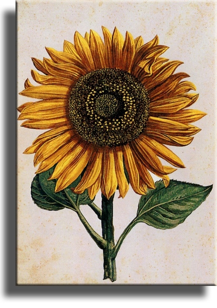 Bqir Luxury Sunflower Ideal Sunflower Wall Decor – Wall Decoration Ideas In Most Popular Sunflower Wall Art (View 3 of 20)