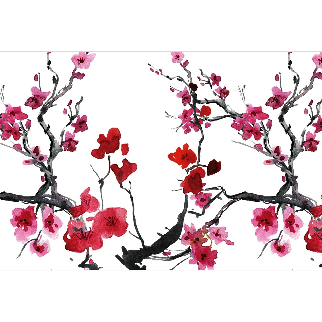 Cherry Blossom – Canvas Print – Wall Art – Australia Regarding Most Recent Cherry Blossom Wall Art (View 3 of 20)