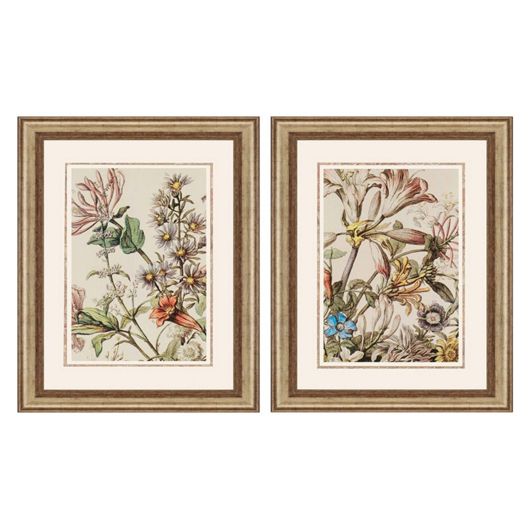 Current Set Of 2 Framed Wall Art For Paragon Decor October Detail Framed Wall Art – Set Of 2 – 7654 (Gallery 5 of 20)