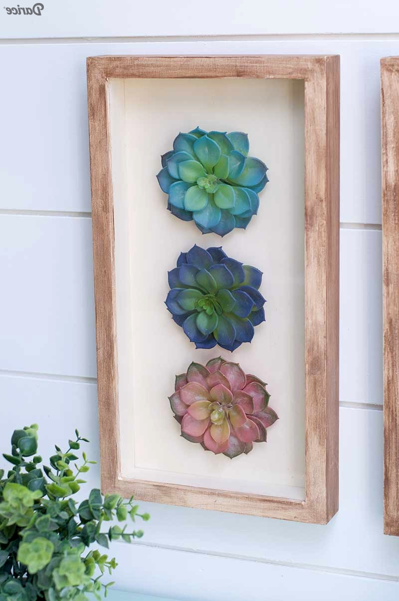 Favorite Succulent Wall Art Throughout Succulent Wall Art (View 9 of 20)