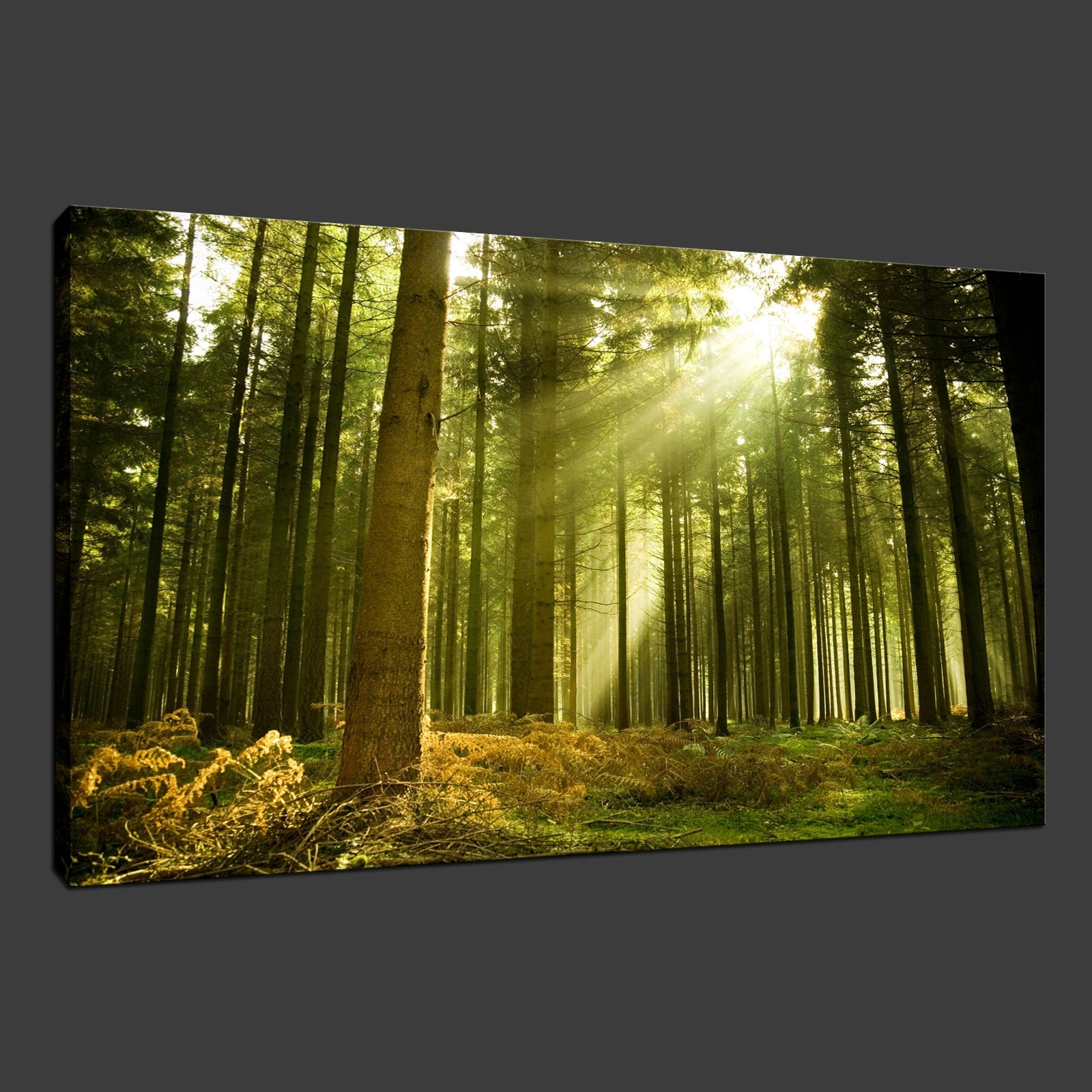 Green Forest Rays Premium Canvas Print Wall Art Modern Design Free Throughout Widely Used Green Wall Art (View 13 of 20)