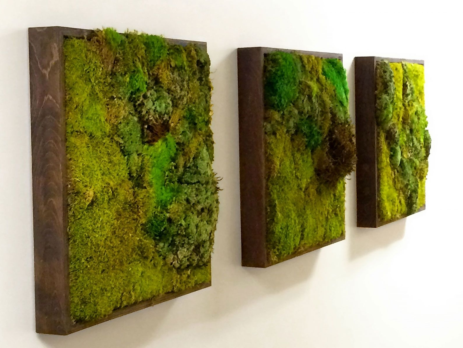 Green Wall Art Within Newest Moss Walls: The Newest Trend In Biophilic Interiors (View 4 of 20)