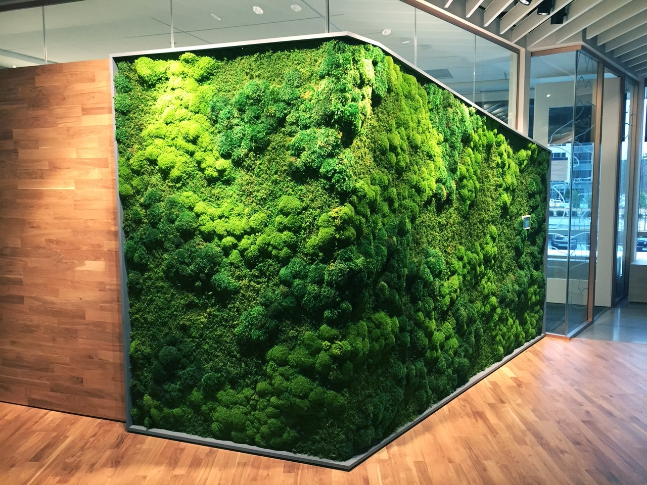 Moss Wall Art For Most Popular Plant Wall Art Commercial Image Galleryartisan Moss (View 8 of 20)