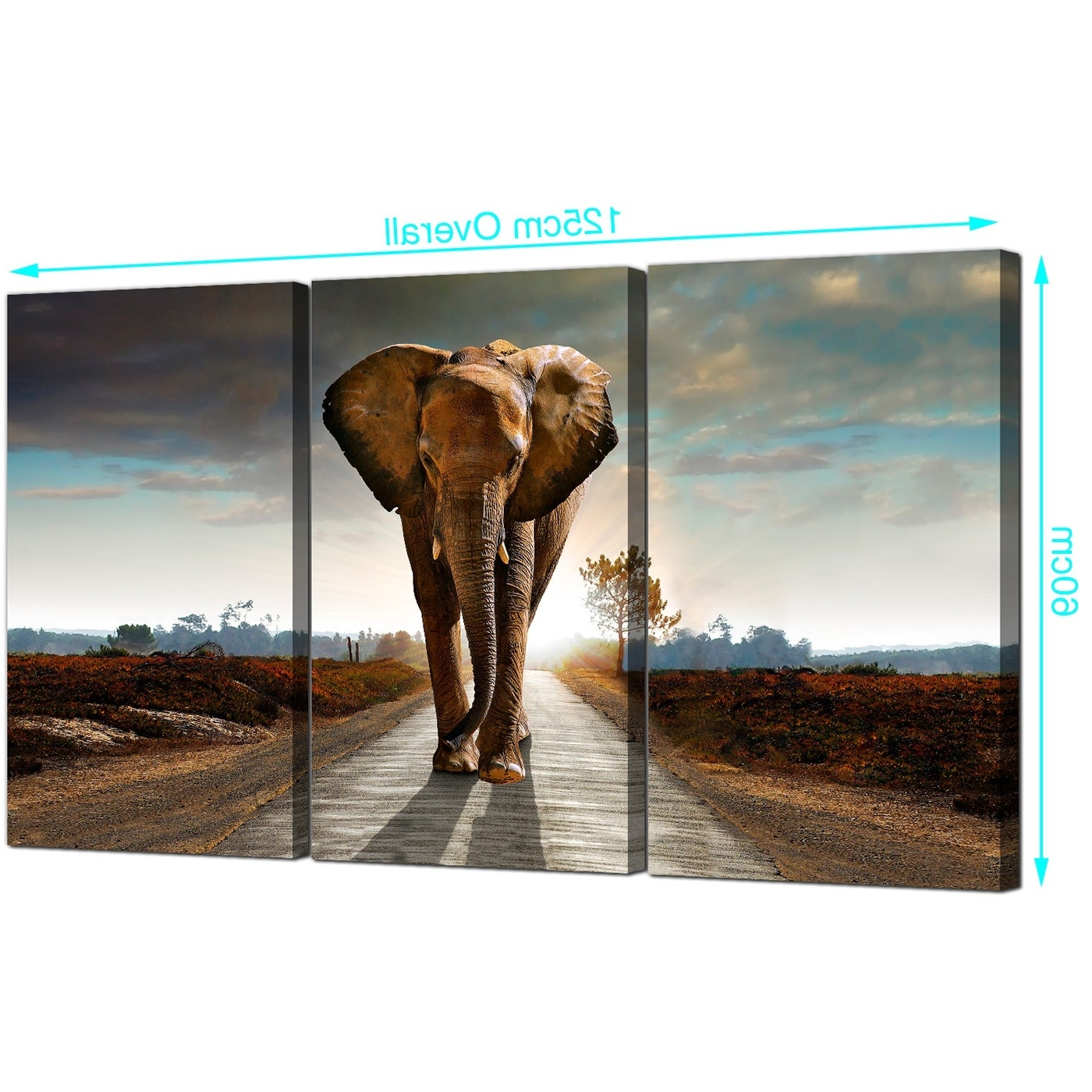 Most Current Large African Elephant Canvas Prints 3 Part For Your Hallway Inside Elephant Canvas Wall Art (View 7 of 20)