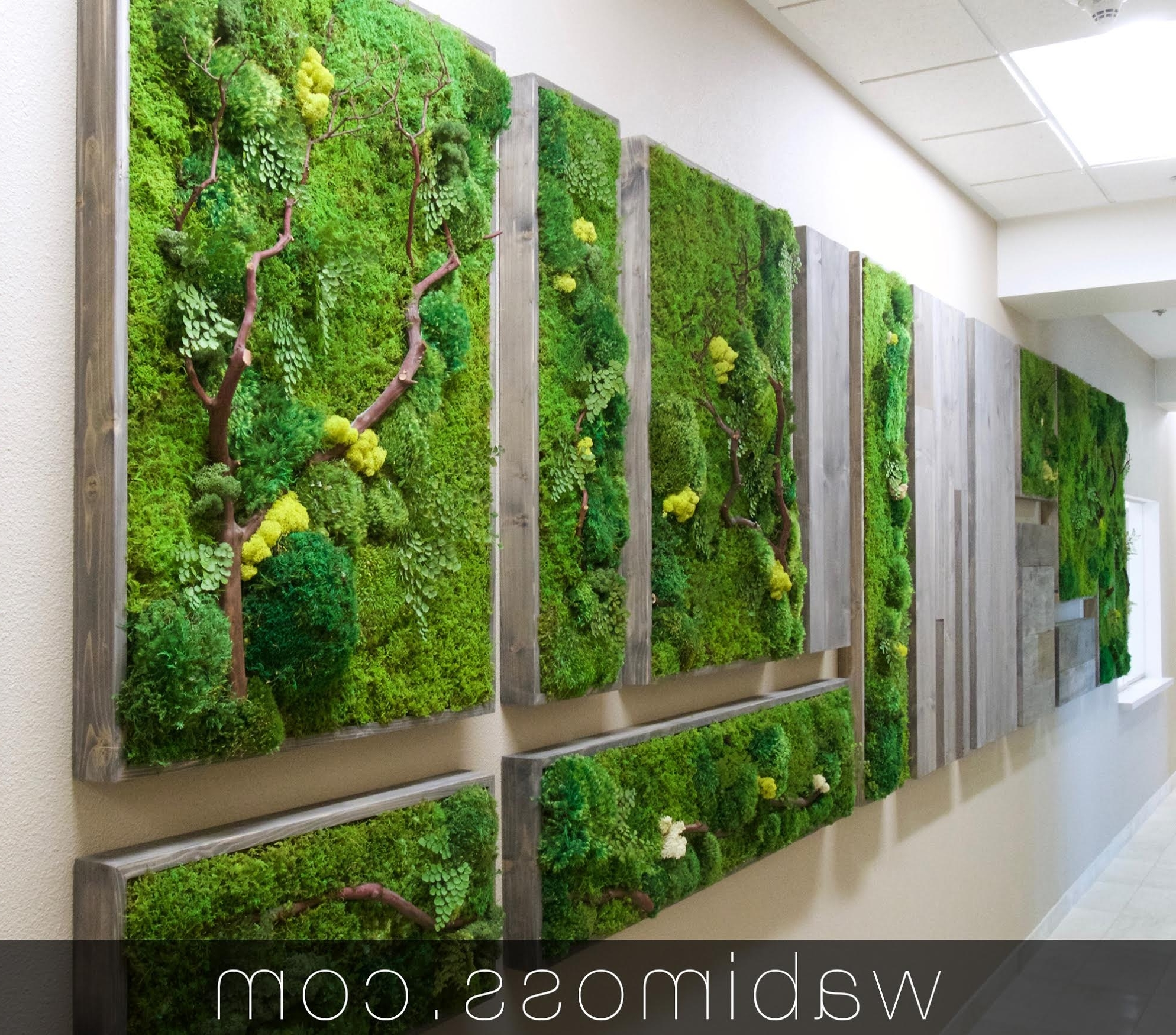 Most Current Moss Art Archives – Wabimoss In Moss Wall Art (Gallery 9 of 20)