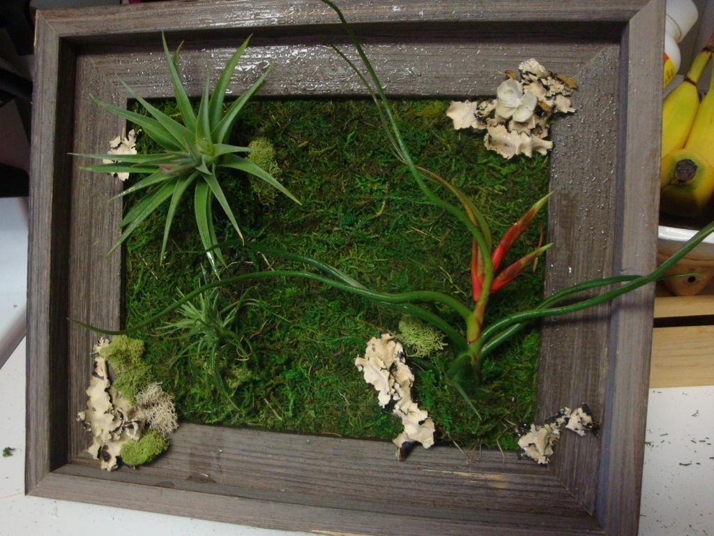 Most Popular Living Wall Art With Living Wall Art: 3 Steps (With Pictures) (View 1 of 20)