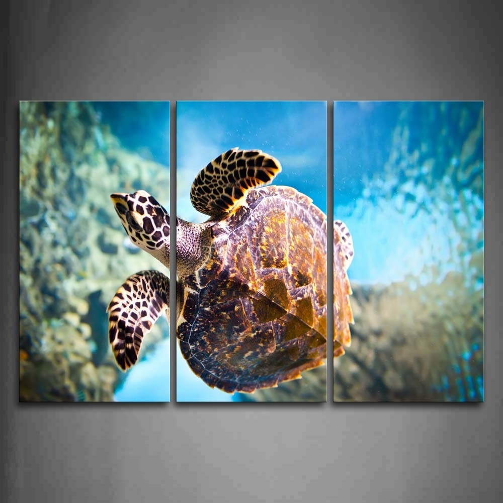 Most Up To Date 3 Piece Split Canvas – Cherry Blossom Pertaining To Sea Turtle Canvas Wall Art (View 9 of 20)