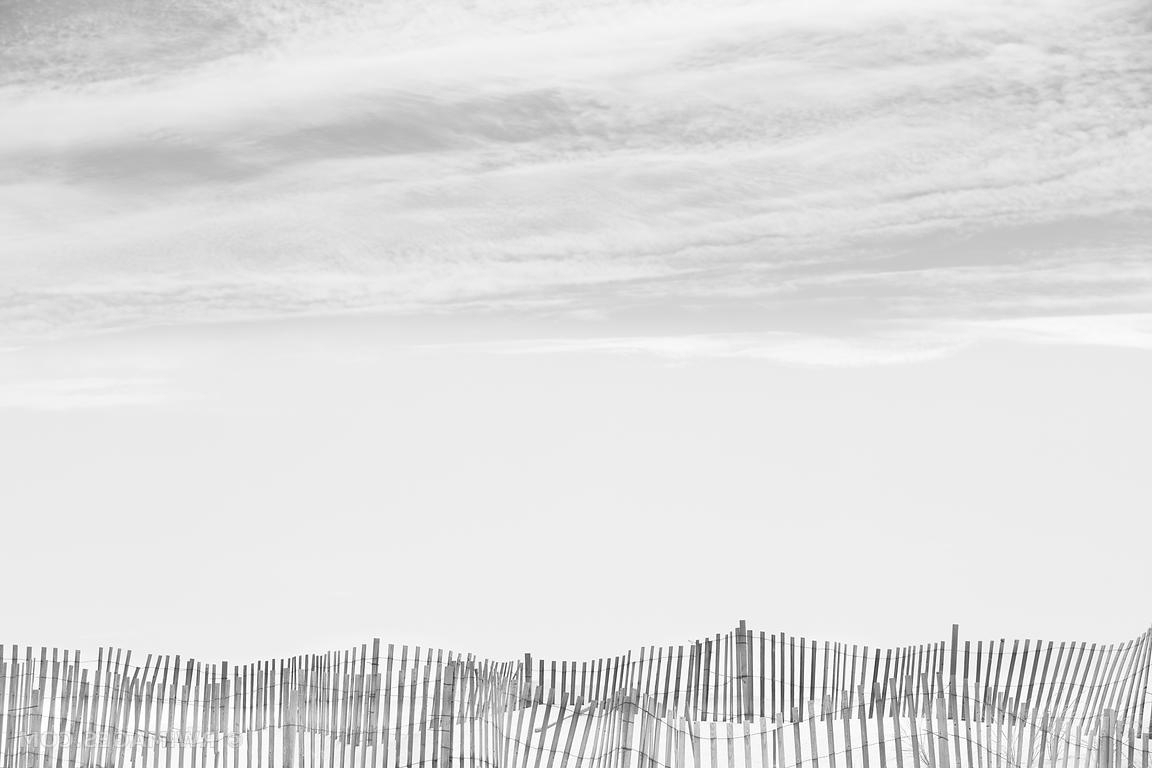 Photo Print Of Southampton Long Island Beach Fence Black And White Inside Well Known Long Island Wall Art (View 17 of 20)