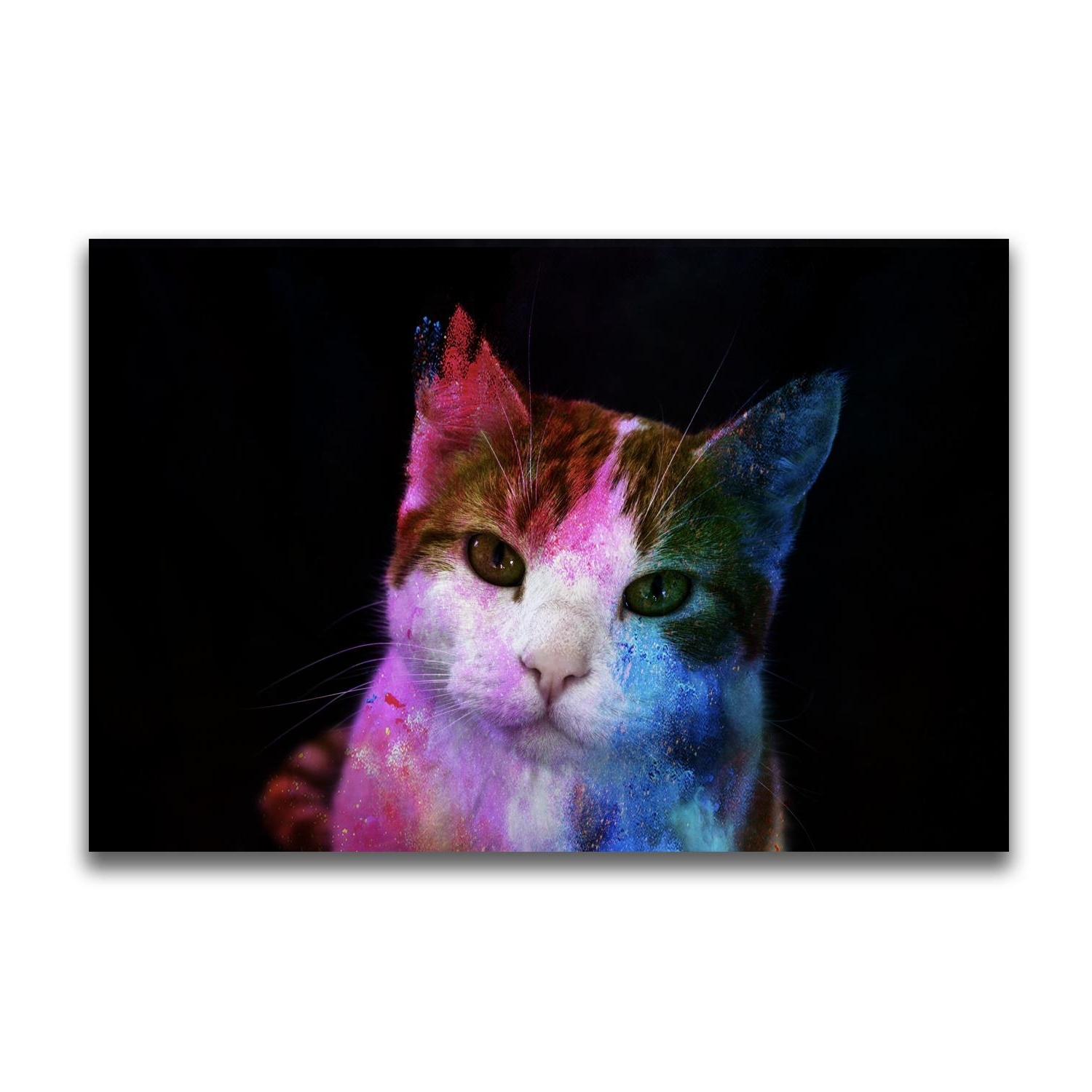 Preferred Cat Canvas Wall Art For 2018 Yj Art A Colorful Cat Unframed Modern Canvas Wall Art For Home (View 15 of 20)