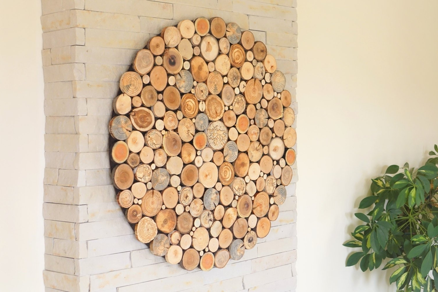 Round Wood Wall Art , Tree Rounds Decor, Holzwand Kunst, Tree Slices With Trendy Round Wood Wall Art (View 8 of 15)