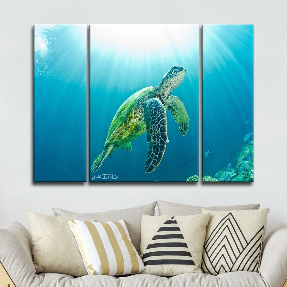 Sea Turtle Canvas Wall Art With Well Known Shop Christopher Doherty 'sea Turtle' Canvas Wall Art (3 Piece (View 15 of 20)