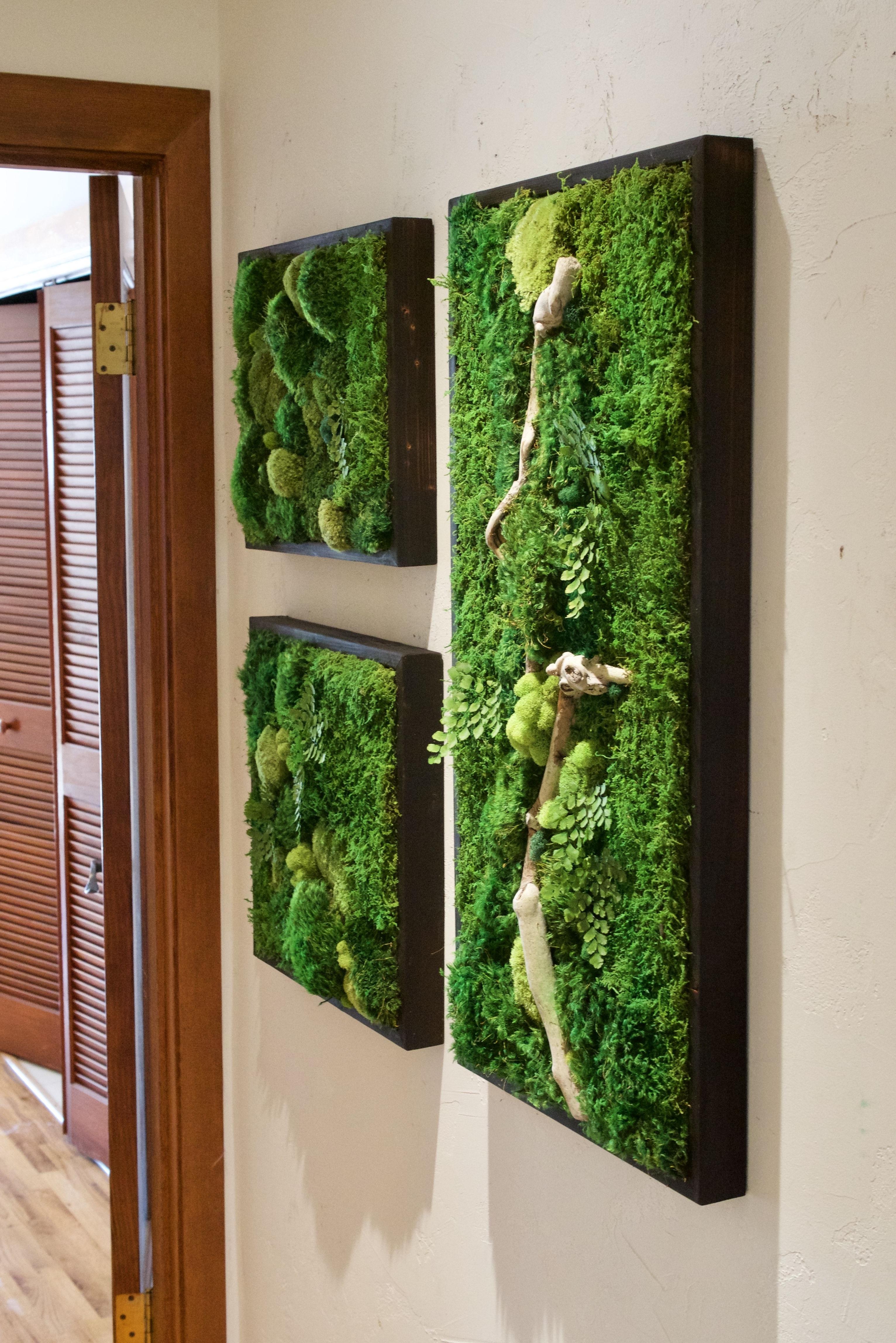 Smaller Size Moss Wall Art Collage Www.wabimoss (Gallery 17 of 20)